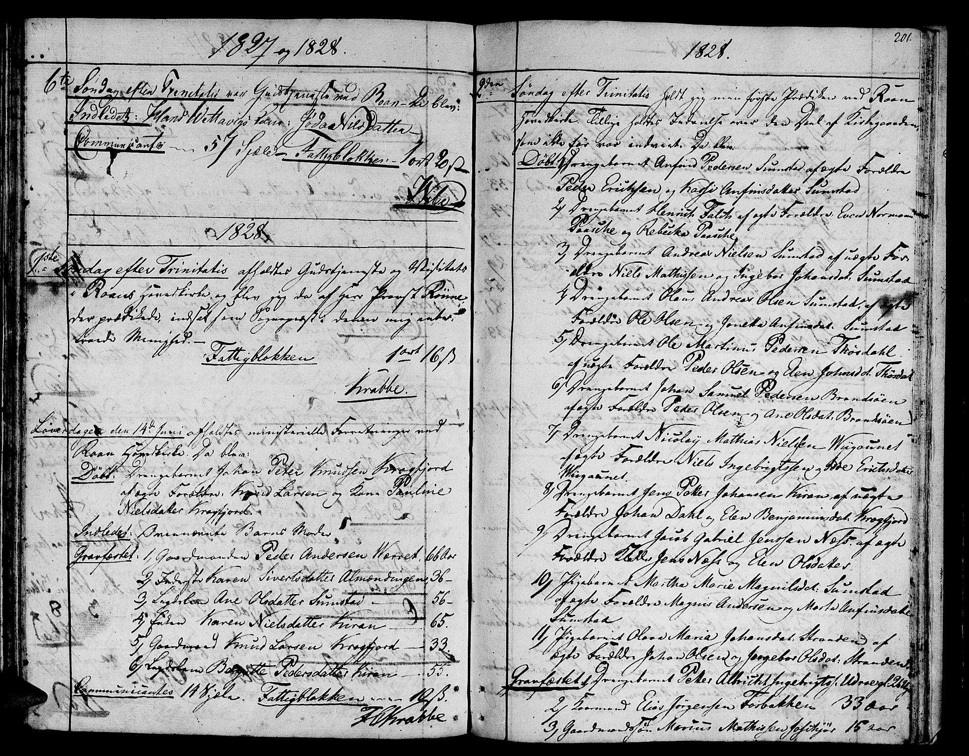 SAT, Ministerialprotokoller, klokkerbøker og fødselsregistre - Sør-Trøndelag, 657/L0701: Ministerialbok nr. 657A02, 1802-1831, s. 201