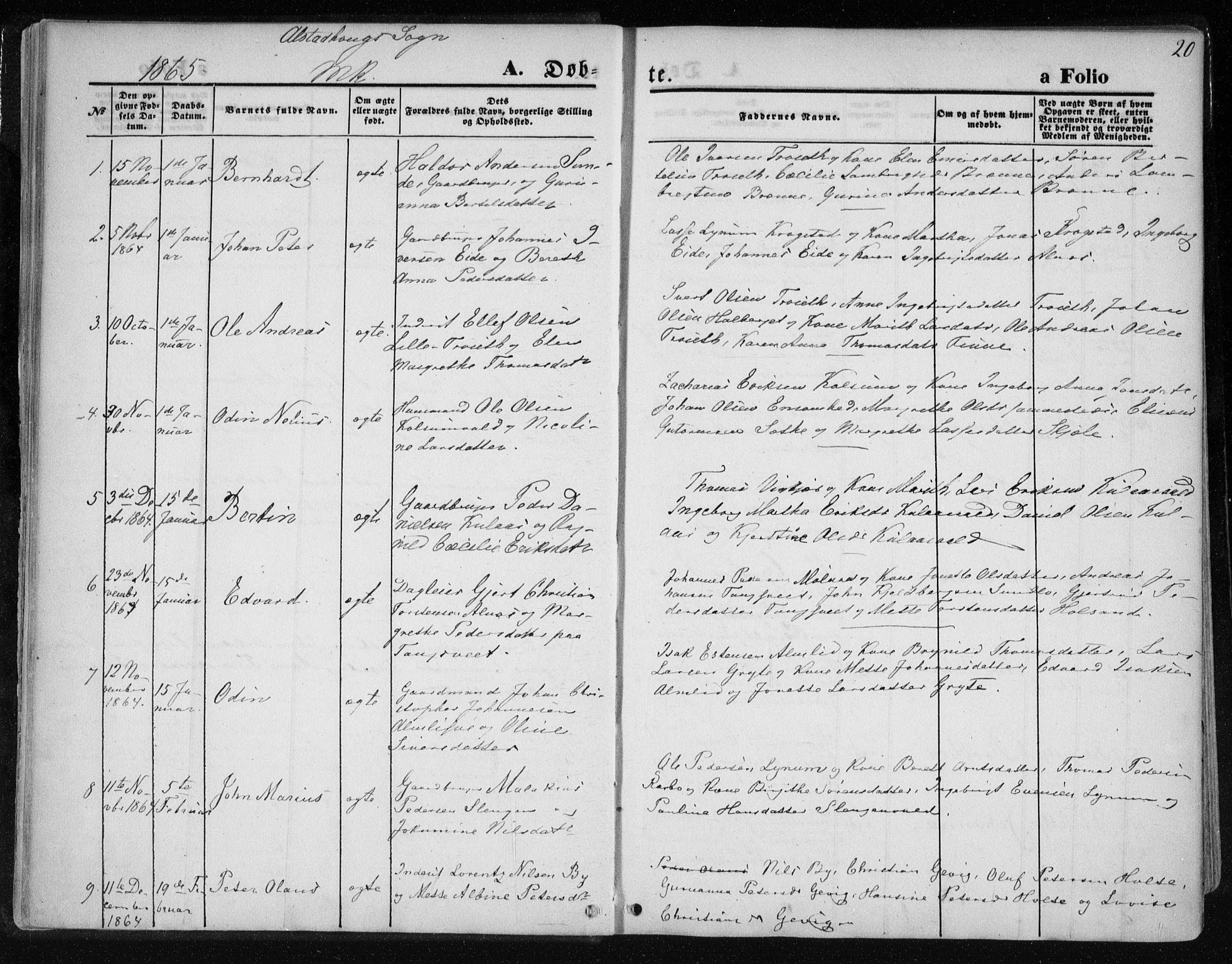 SAT, Ministerialprotokoller, klokkerbøker og fødselsregistre - Nord-Trøndelag, 717/L0157: Ministerialbok nr. 717A08 /1, 1863-1877, s. 20