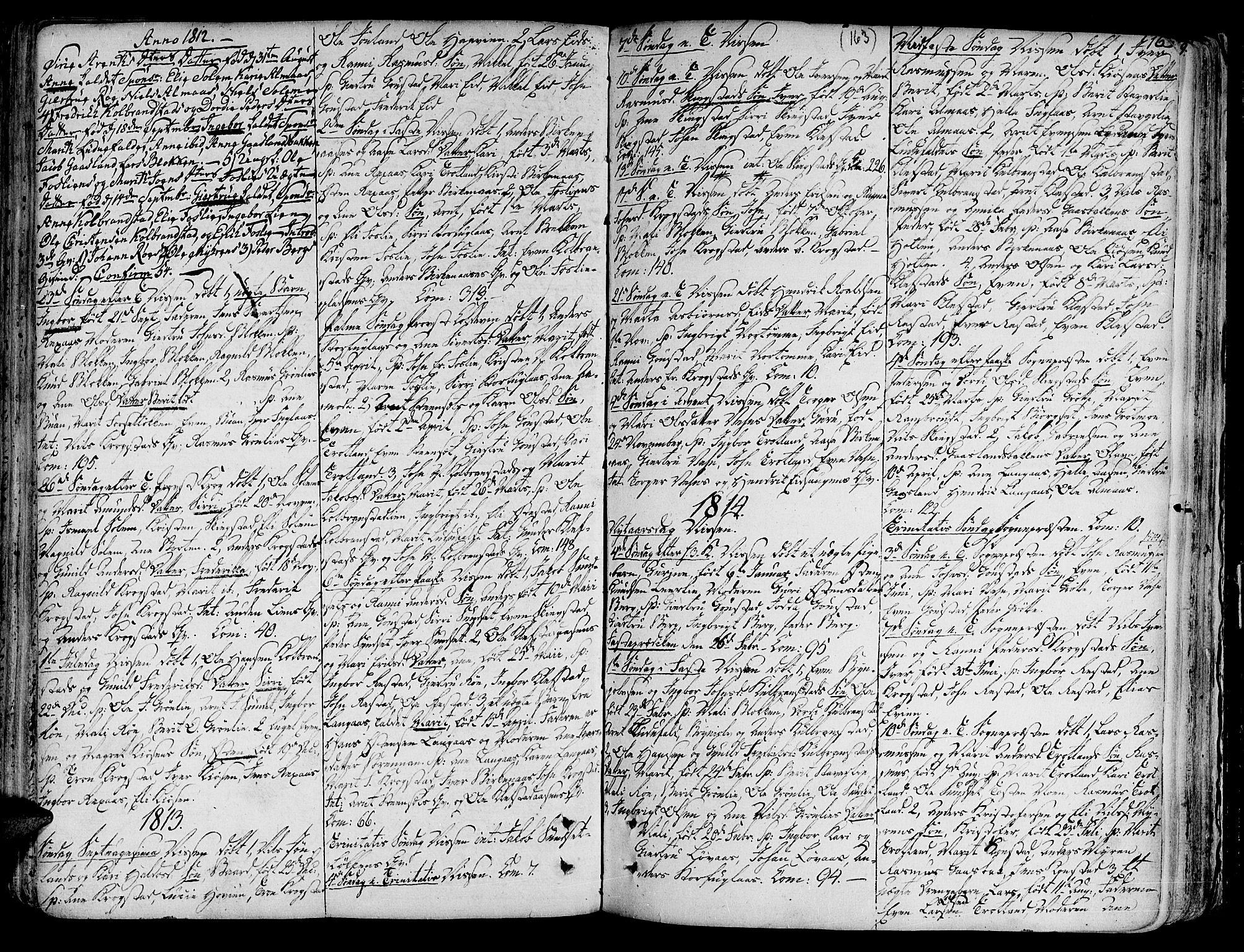 SAT, Ministerialprotokoller, klokkerbøker og fødselsregistre - Sør-Trøndelag, 691/L1064: Ministerialbok nr. 691A02 /4, 1768-1815, s. 163