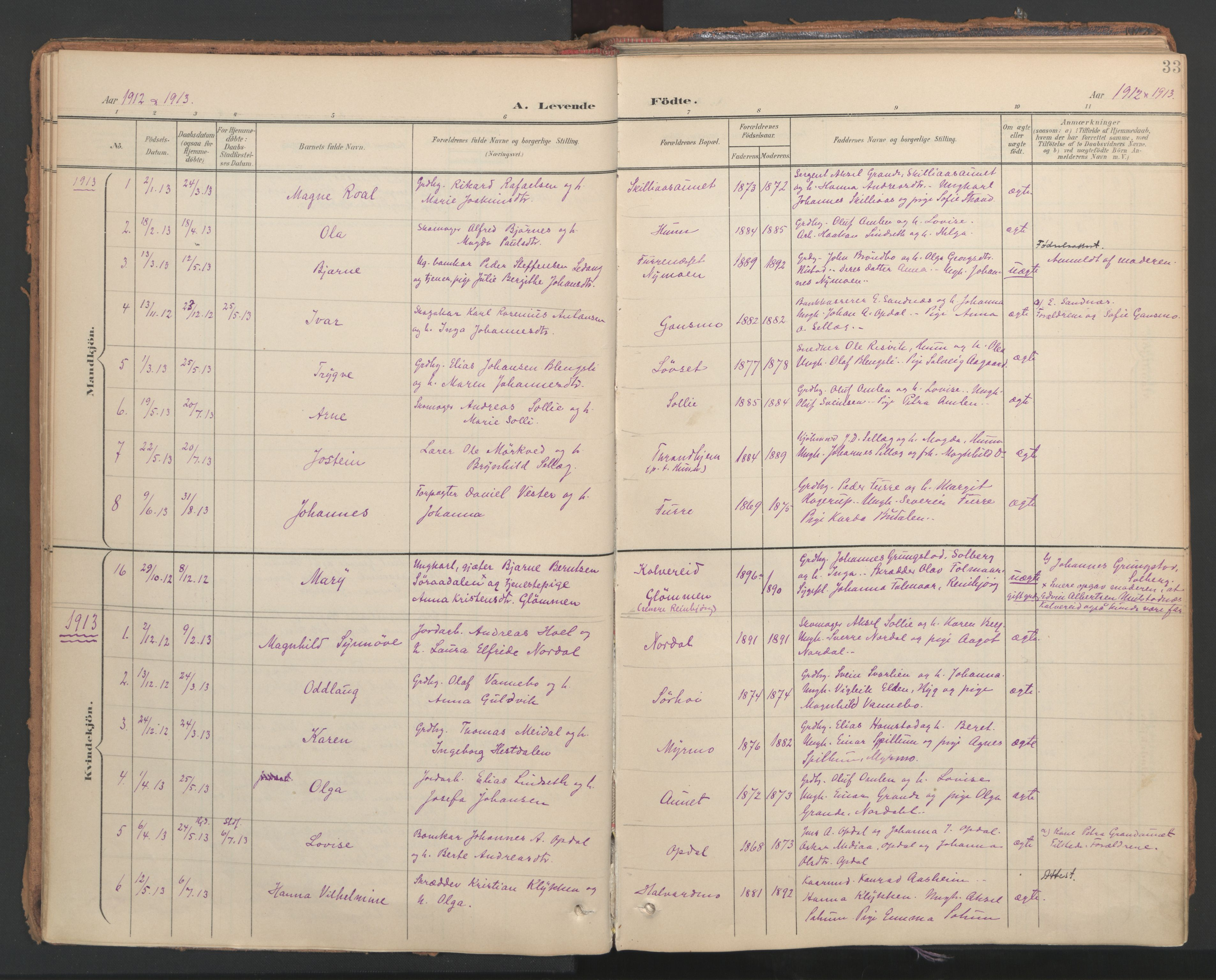 SAT, Ministerialprotokoller, klokkerbøker og fødselsregistre - Nord-Trøndelag, 766/L0564: Ministerialbok nr. 767A02, 1900-1932, s. 33