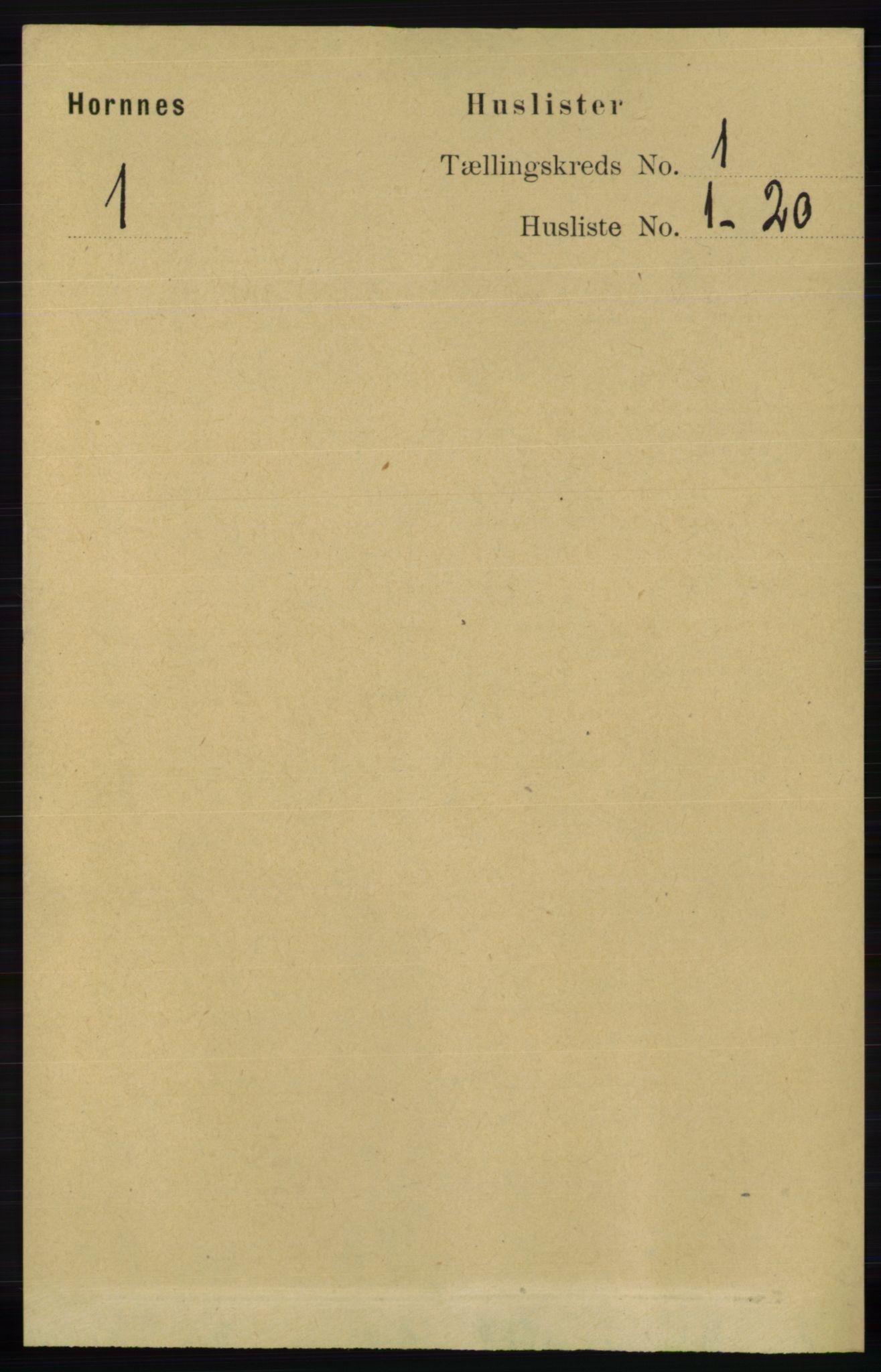 RA, Folketelling 1891 for 0936 Hornnes herred, 1891, s. 15