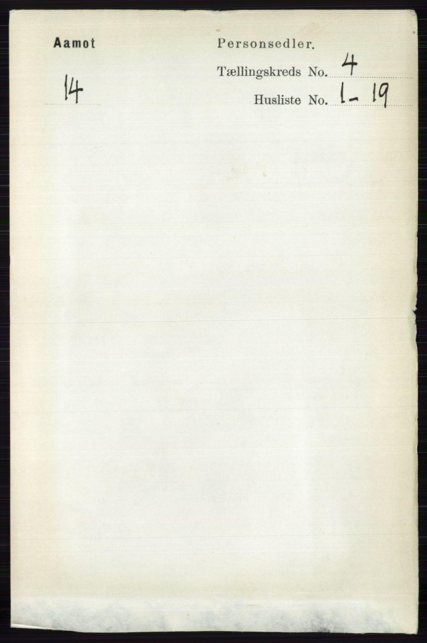 RA, Folketelling 1891 for 0429 Åmot herred, 1891, s. 2121