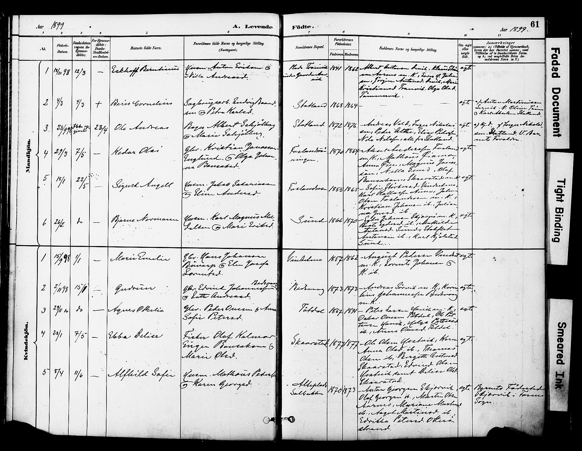 SAT, Ministerialprotokoller, klokkerbøker og fødselsregistre - Nord-Trøndelag, 774/L0628: Ministerialbok nr. 774A02, 1887-1903, s. 61