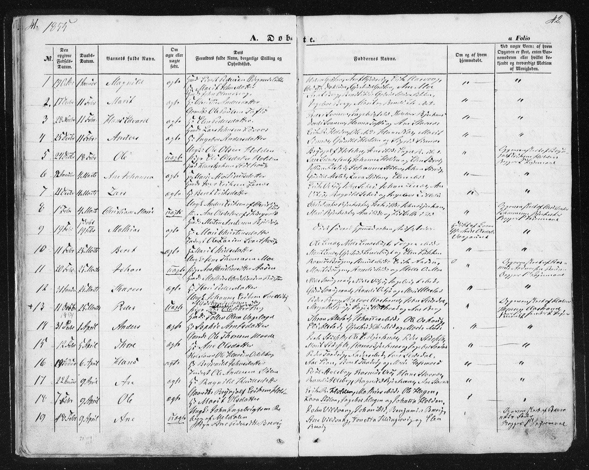 SAT, Ministerialprotokoller, klokkerbøker og fødselsregistre - Sør-Trøndelag, 630/L0494: Ministerialbok nr. 630A07, 1852-1868, s. 41-42