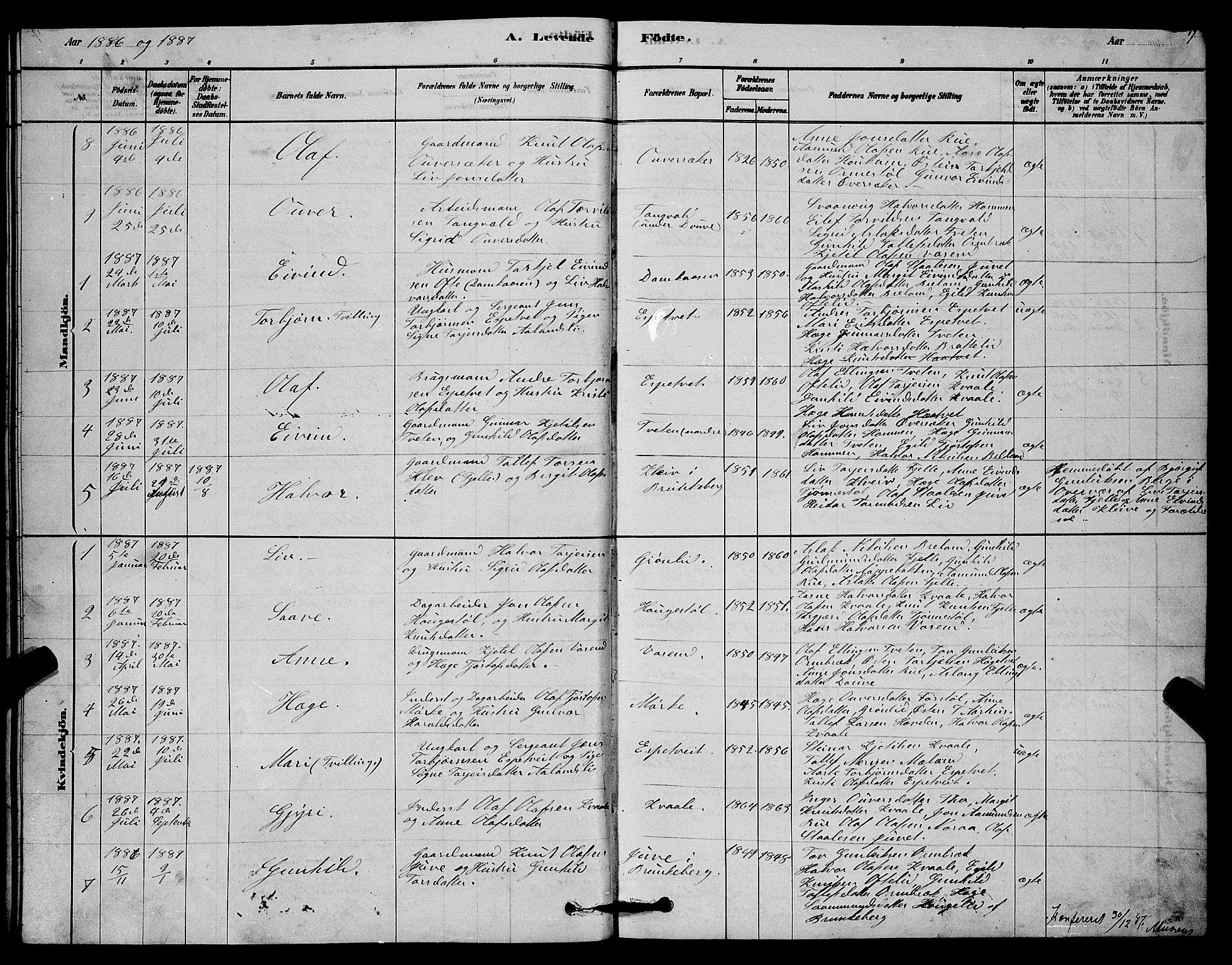 SAKO, Lårdal kirkebøker, G/Gc/L0003: Klokkerbok nr. III 3, 1878-1890, s. 17