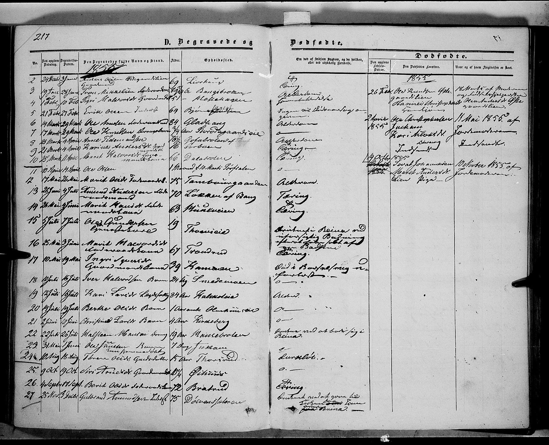 SAH, Sør-Aurdal prestekontor, Ministerialbok nr. 5, 1849-1876, s. 217