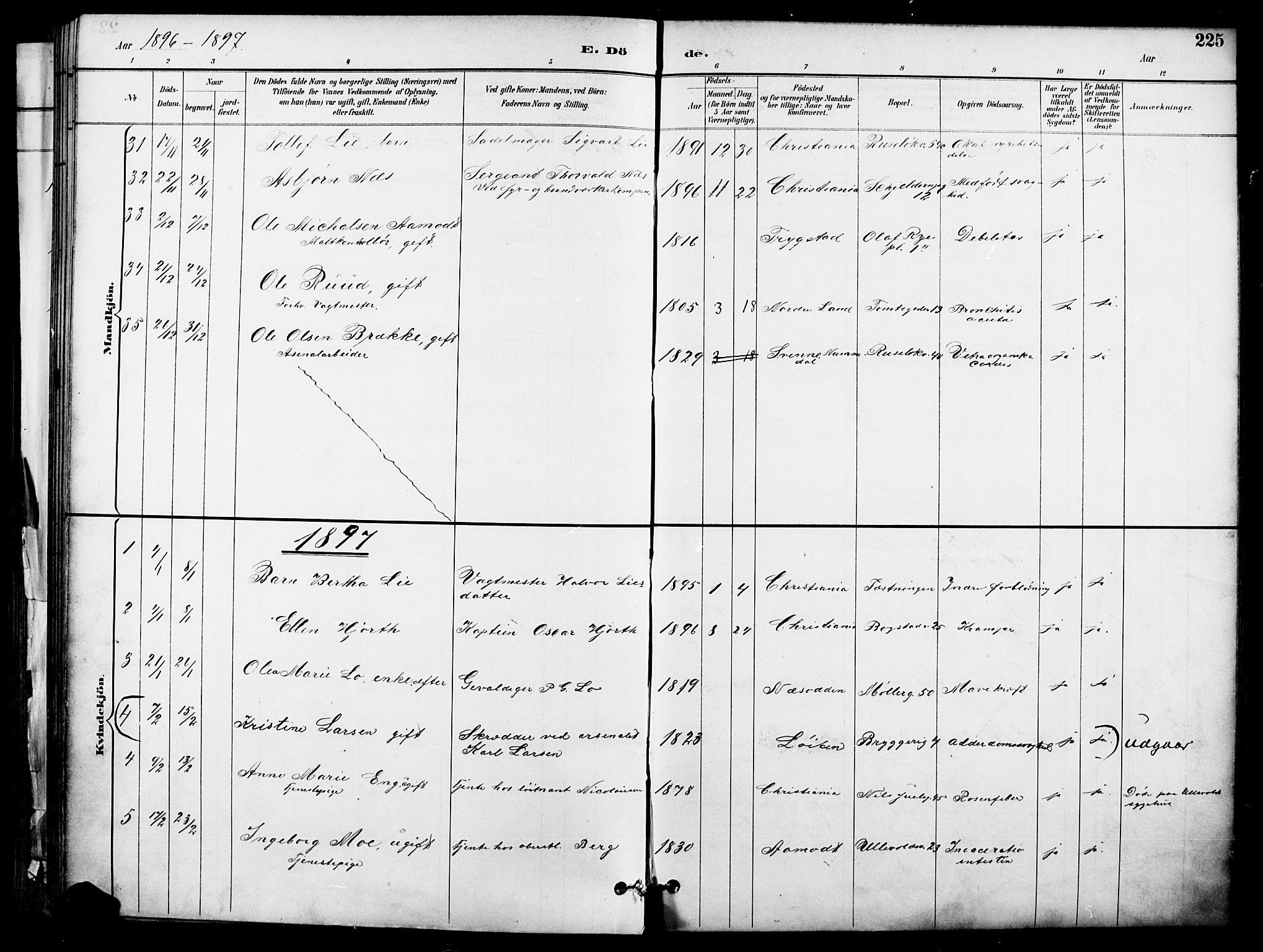 SAO, Garnisonsmenigheten Kirkebøker, F/Fa/L0013: Ministerialbok nr. 13, 1894-1904, s. 225