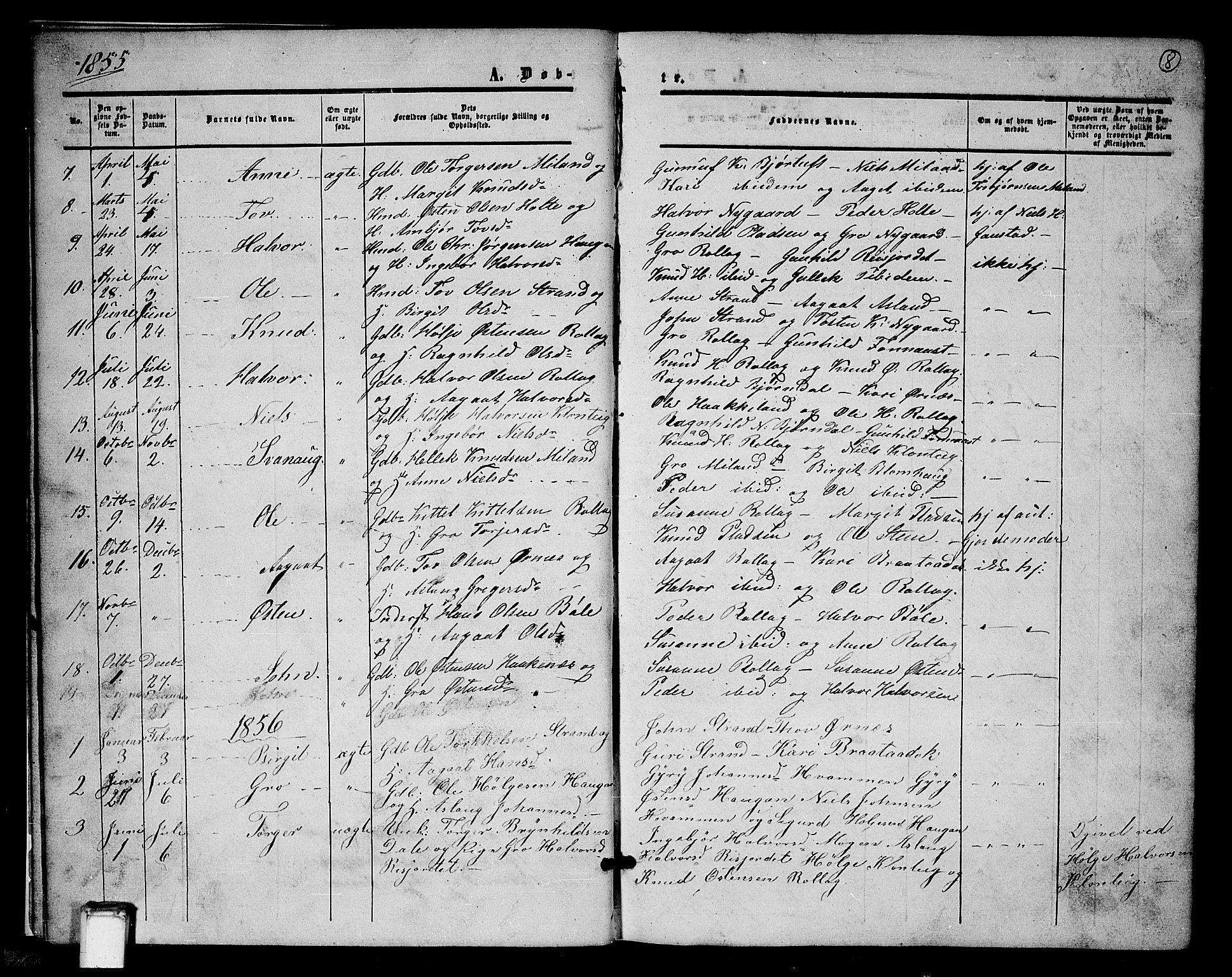 SAKO, Tinn kirkebøker, G/Gb/L0002: Klokkerbok nr. II 2, 1851-1886, s. 8