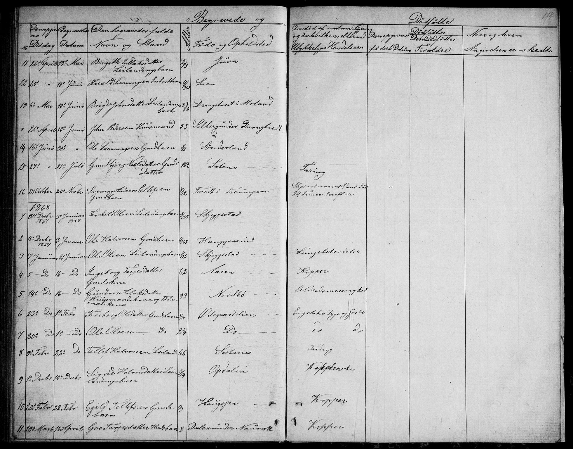 SAKO, Nissedal kirkebøker, G/Gb/L0002: Klokkerbok nr. II 2, 1863-1892, s. 114
