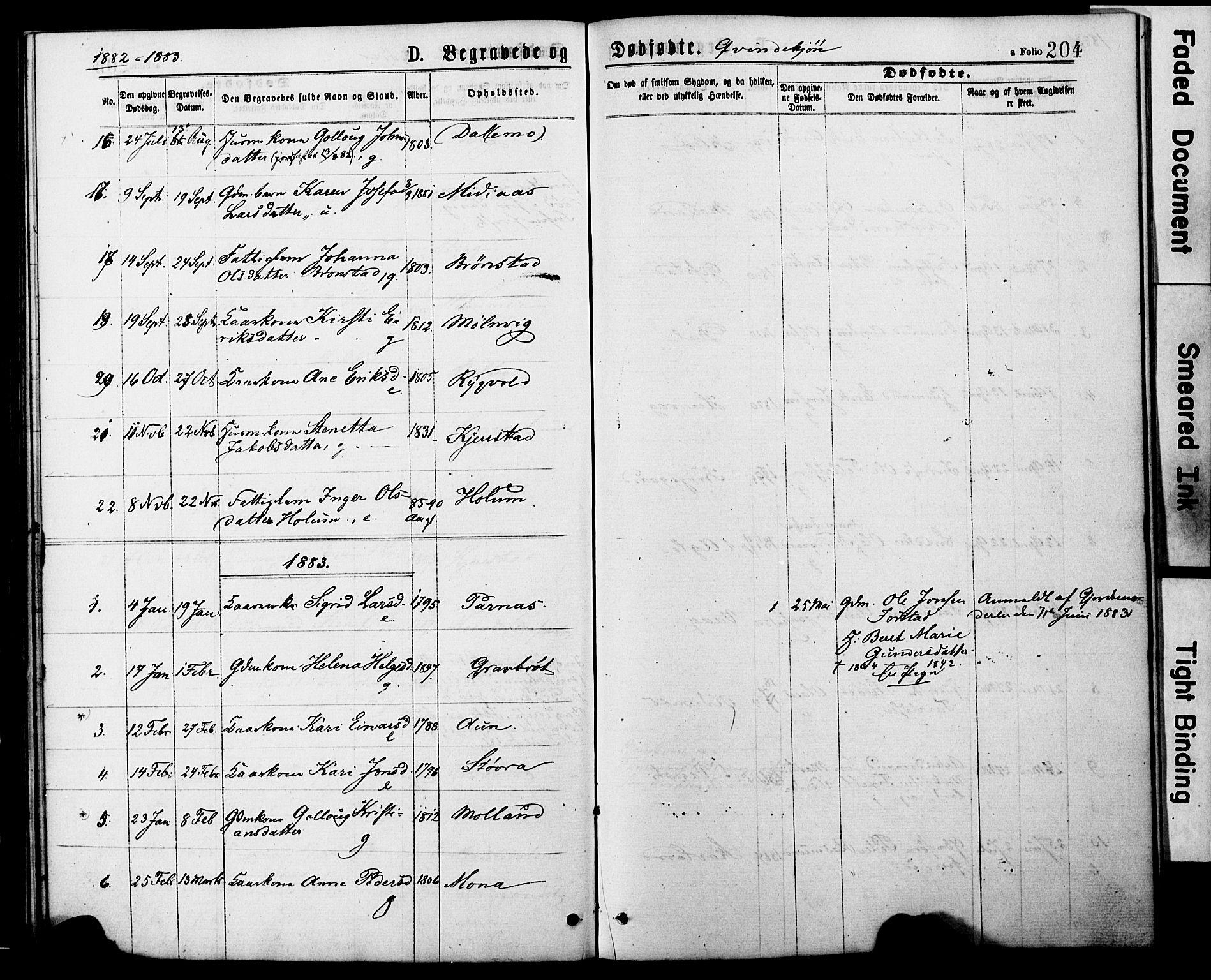 SAT, Ministerialprotokoller, klokkerbøker og fødselsregistre - Nord-Trøndelag, 749/L0473: Ministerialbok nr. 749A07, 1873-1887, s. 204
