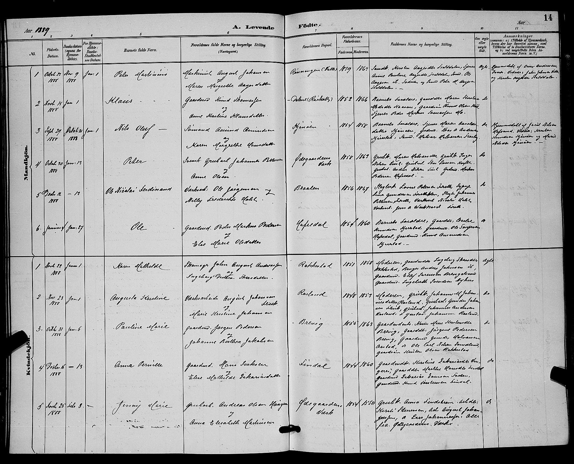 SAKO, Bamble kirkebøker, G/Ga/L0009: Klokkerbok nr. I 9, 1888-1900, s. 14