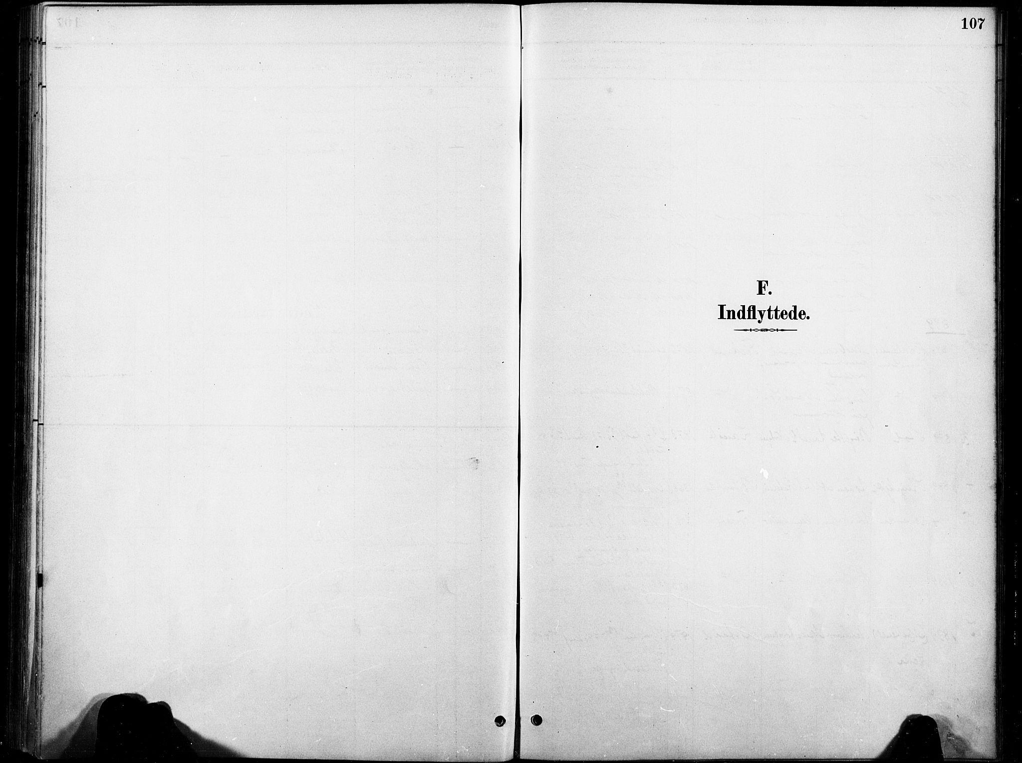 SAT, Ministerialprotokoller, klokkerbøker og fødselsregistre - Nord-Trøndelag, 738/L0364: Ministerialbok nr. 738A01, 1884-1902, s. 107