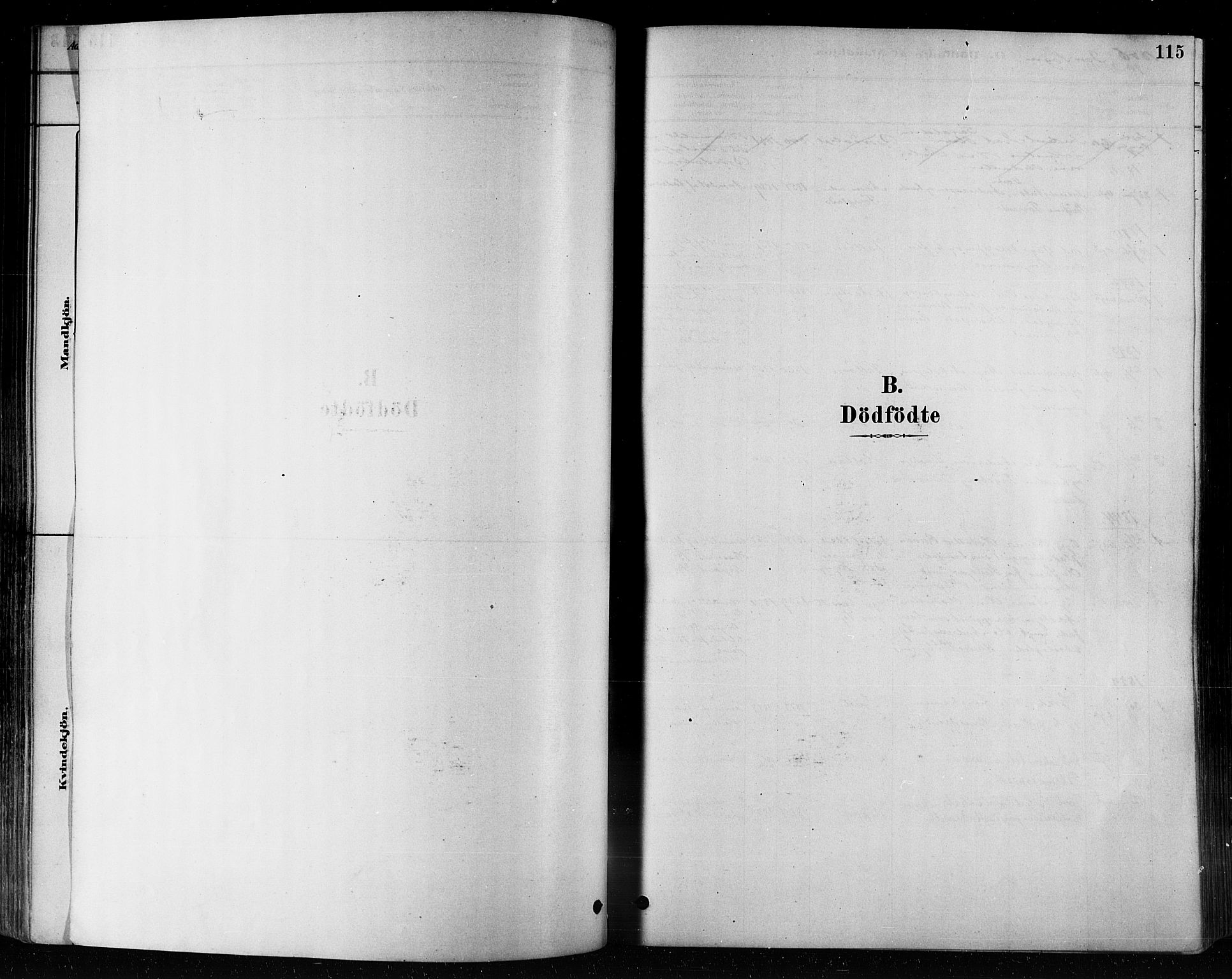 SAT, Ministerialprotokoller, klokkerbøker og fødselsregistre - Nord-Trøndelag, 746/L0448: Ministerialbok nr. 746A07 /1, 1878-1900, s. 115