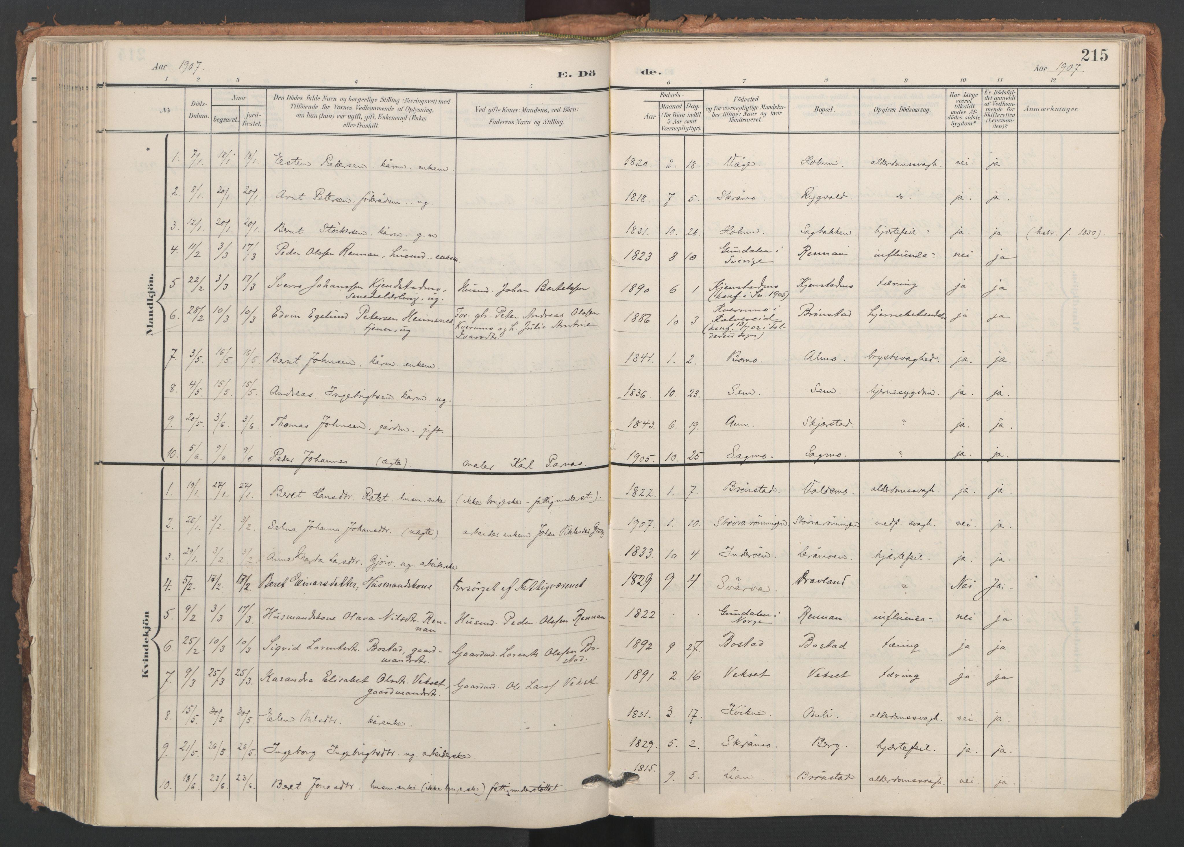 SAT, Ministerialprotokoller, klokkerbøker og fødselsregistre - Nord-Trøndelag, 749/L0477: Ministerialbok nr. 749A11, 1902-1927, s. 215
