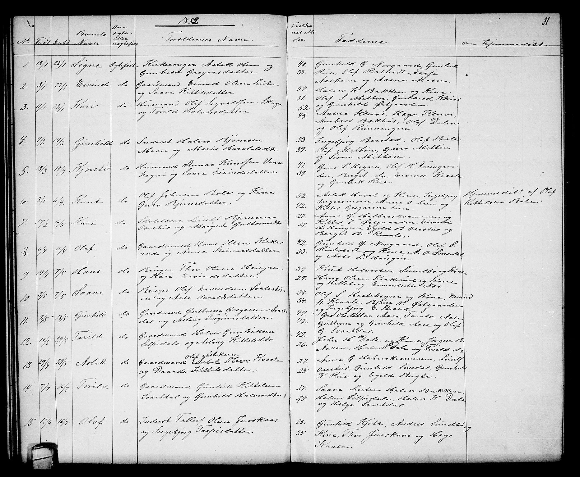 SAKO, Seljord kirkebøker, G/Gb/L0003: Klokkerbok nr. II 3, 1863-1884, s. 31