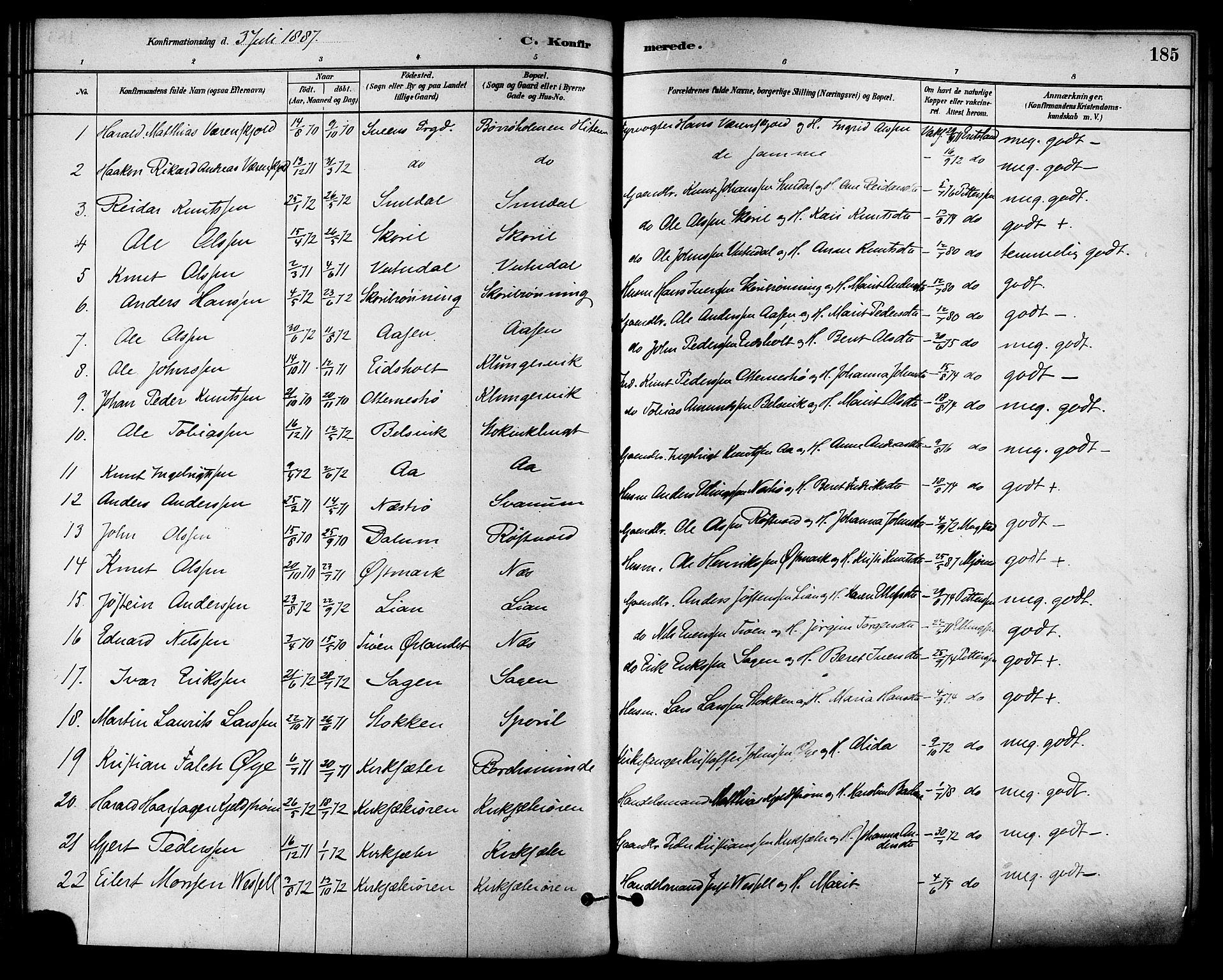 SAT, Ministerialprotokoller, klokkerbøker og fødselsregistre - Sør-Trøndelag, 630/L0496: Ministerialbok nr. 630A09, 1879-1895, s. 185