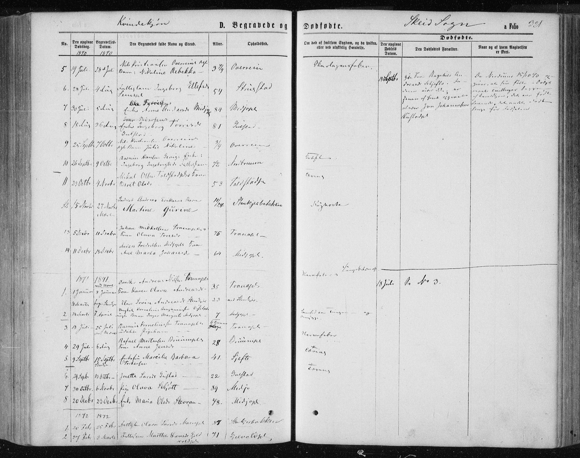 SAT, Ministerialprotokoller, klokkerbøker og fødselsregistre - Nord-Trøndelag, 735/L0345: Ministerialbok nr. 735A08 /2, 1863-1872, s. 321