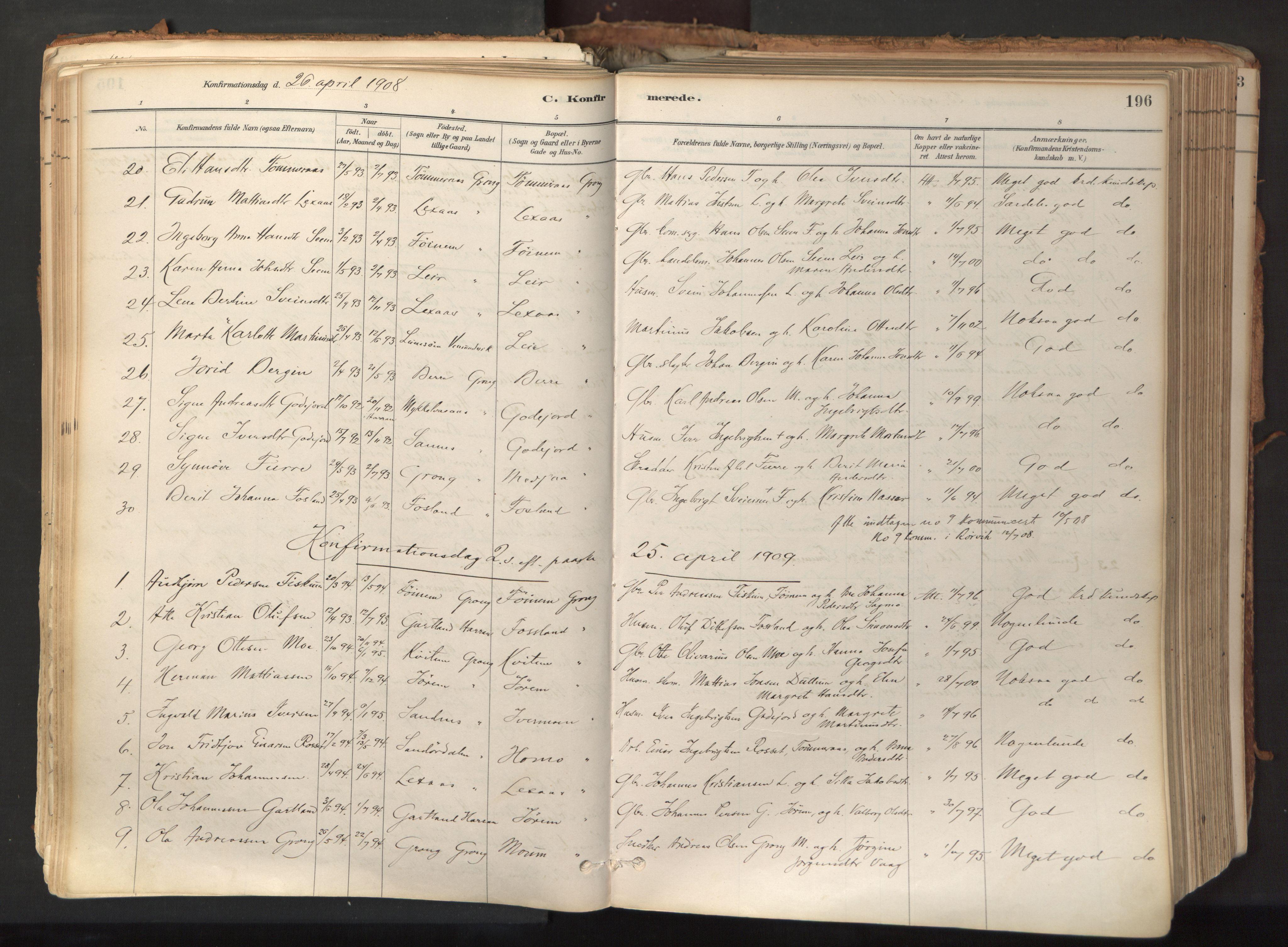SAT, Ministerialprotokoller, klokkerbøker og fødselsregistre - Nord-Trøndelag, 758/L0519: Ministerialbok nr. 758A04, 1880-1926, s. 196