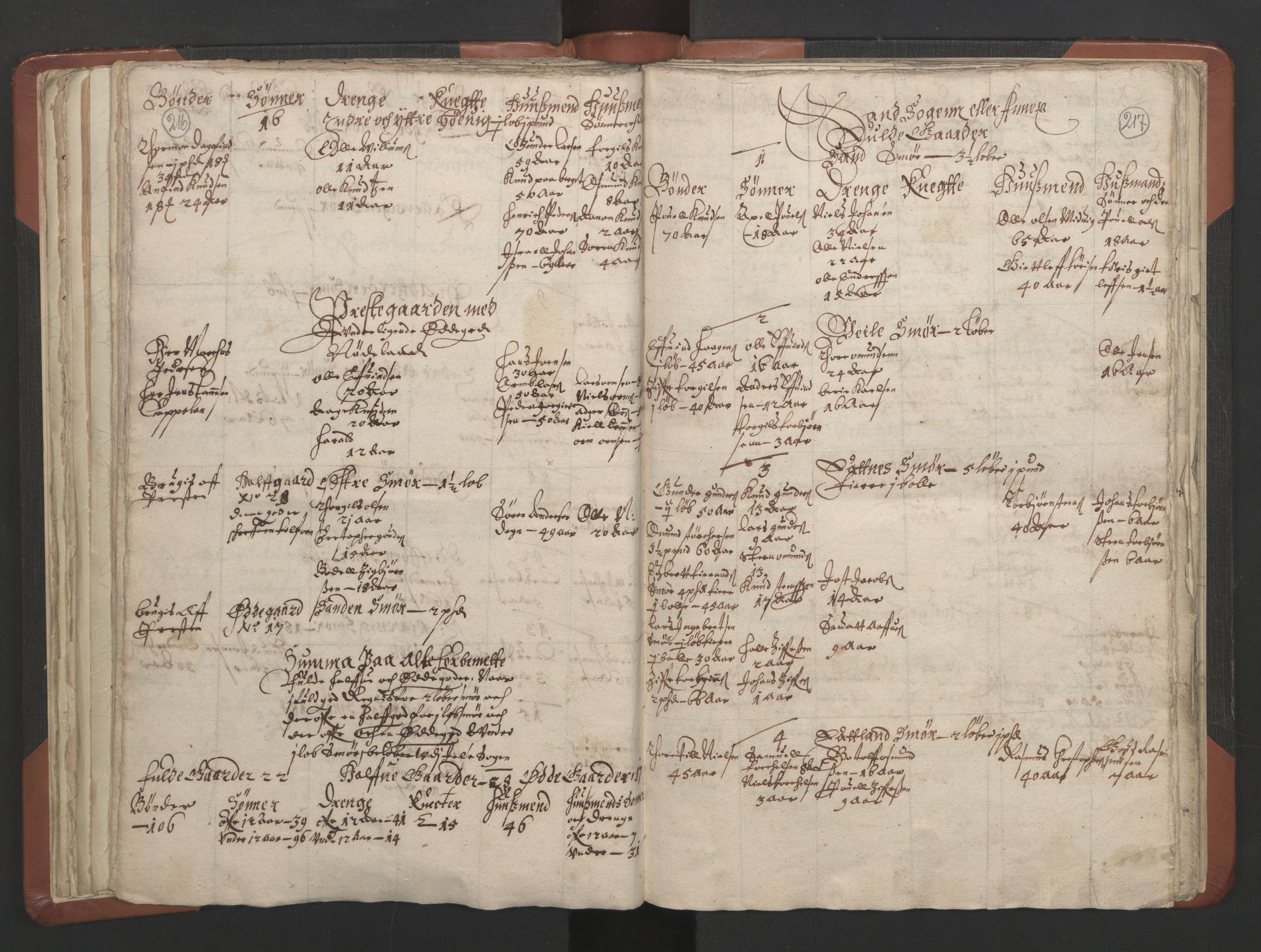 RA, Sogneprestenes manntall 1664-1666, nr. 19: Ryfylke prosti, 1664-1666, s. 216-217