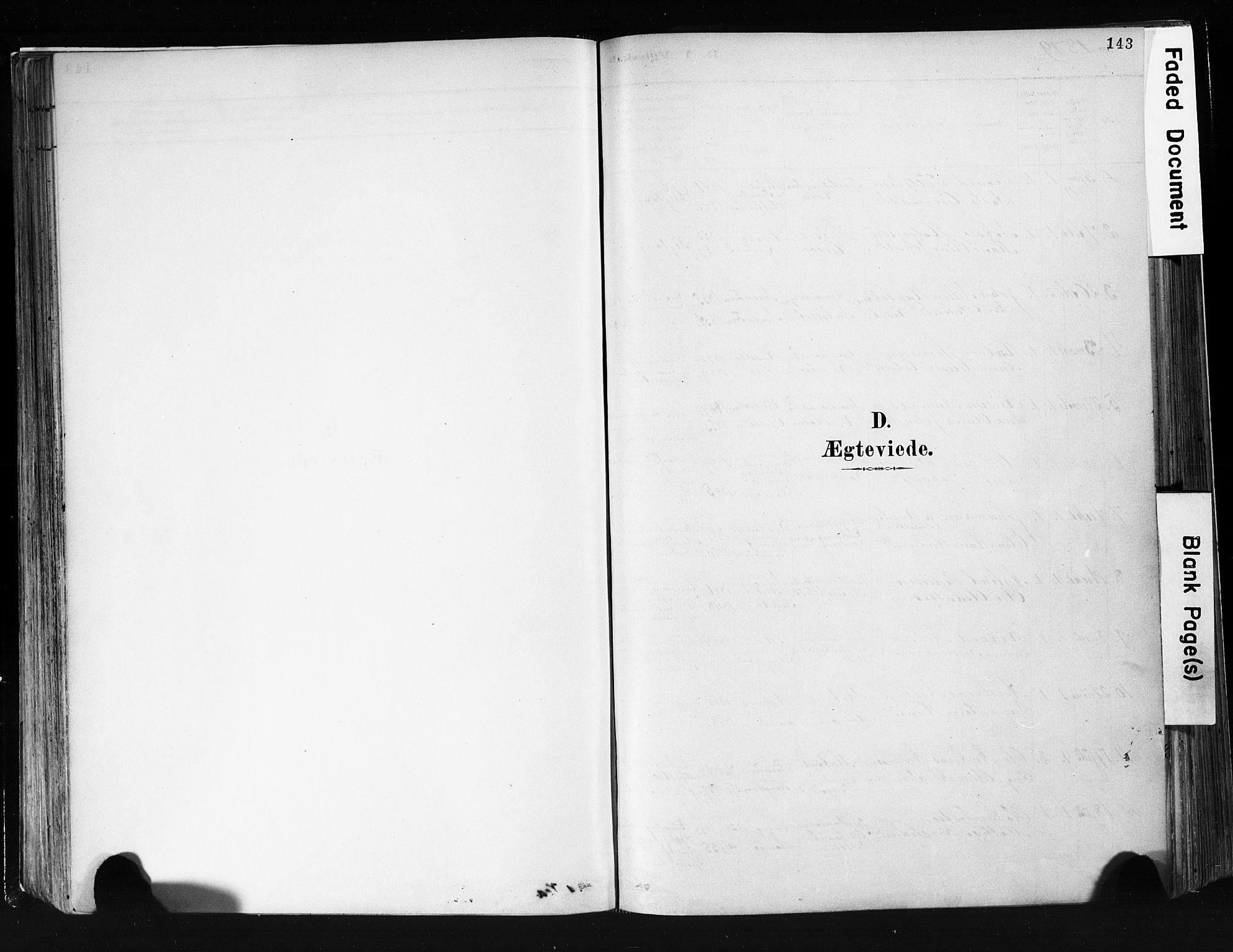 SAKO, Eidanger kirkebøker, F/Fa/L0012: Ministerialbok nr. 12, 1879-1900, s. 143