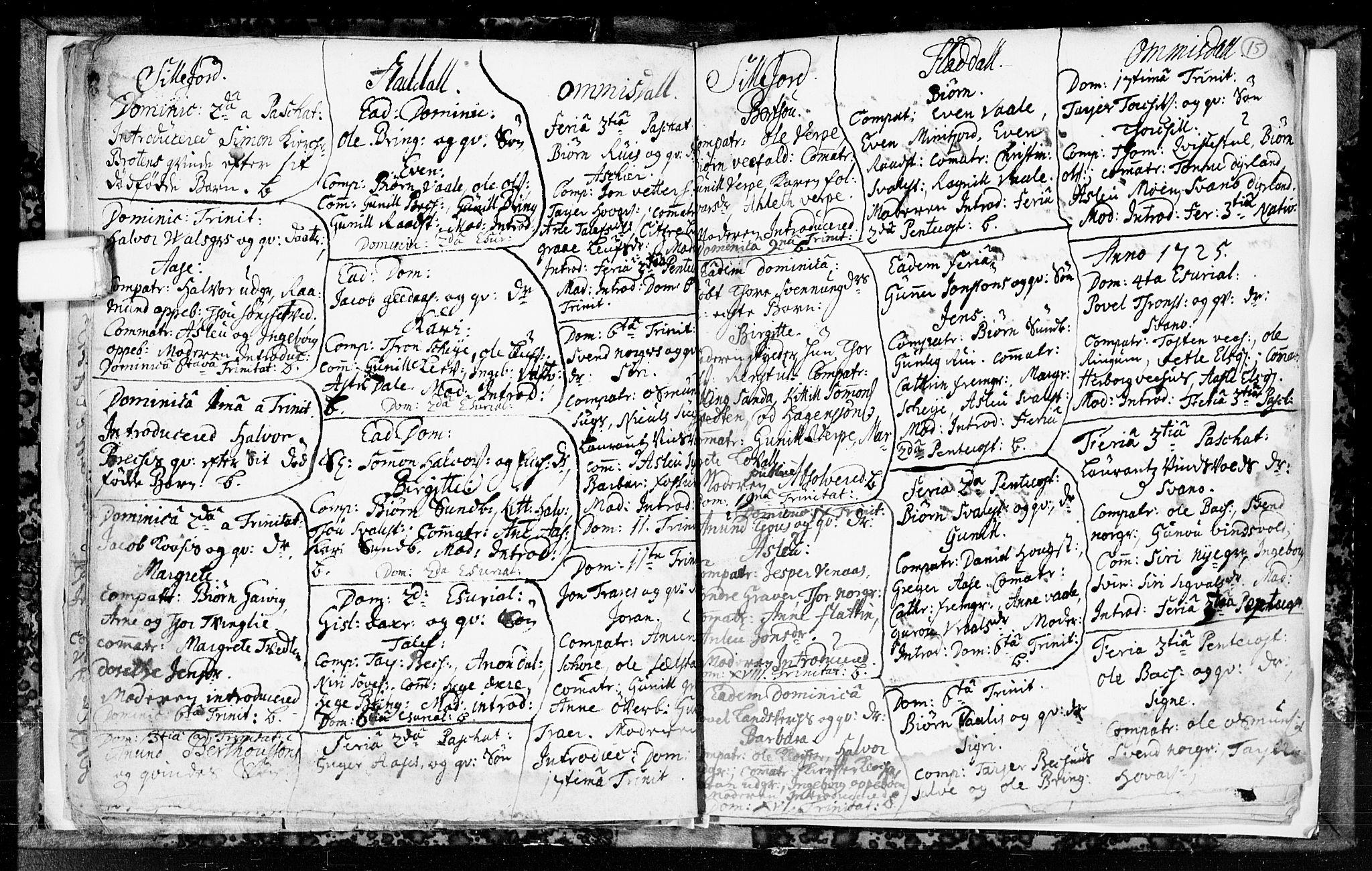 SAKO, Seljord kirkebøker, F/Fa/L0003: Ministerialbok nr. I 3, 1714-1725, s. 15
