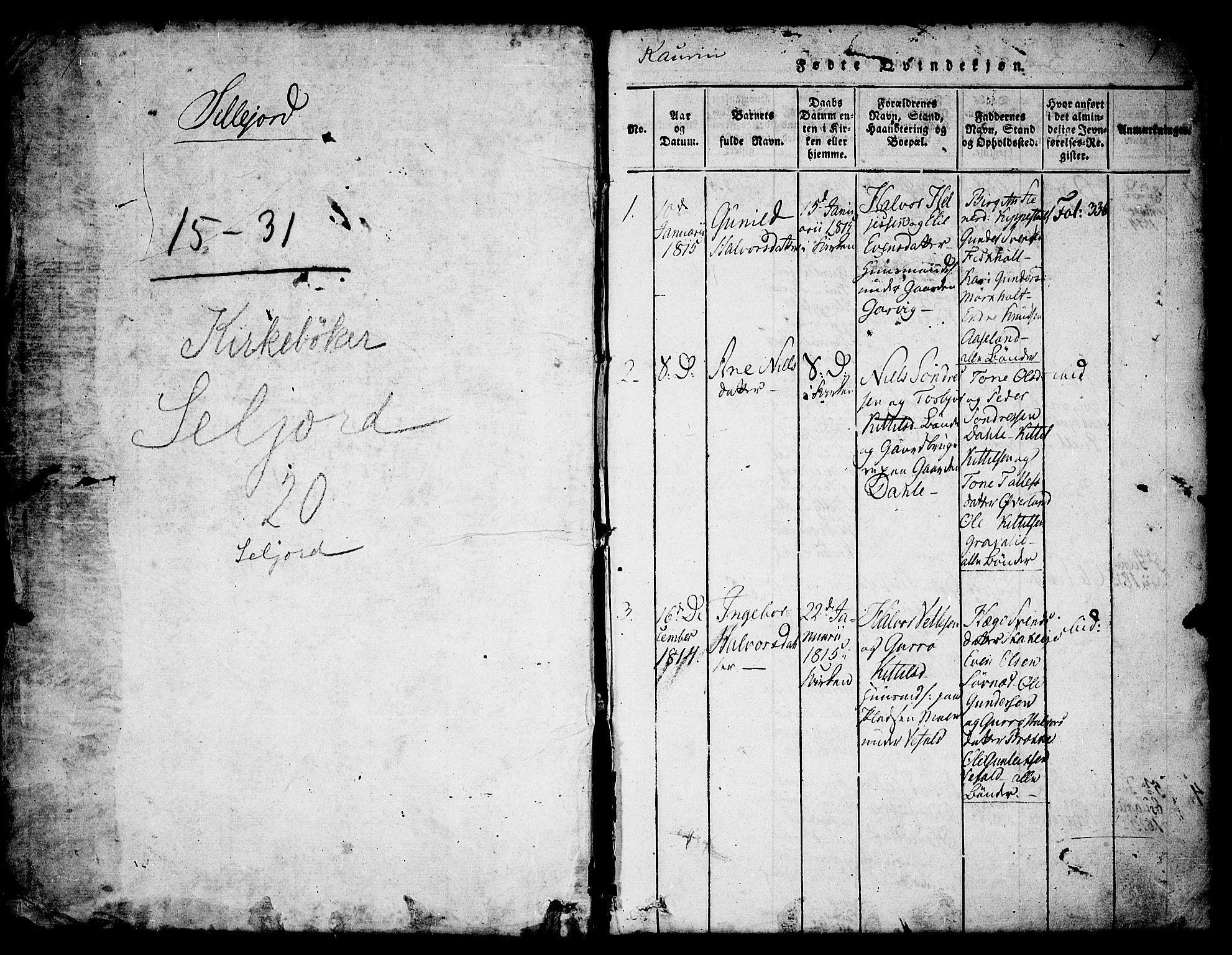 SAKO, Seljord kirkebøker, F/Fa/L0010: Ministerialbok nr. I 10, 1815-1831, s. 1