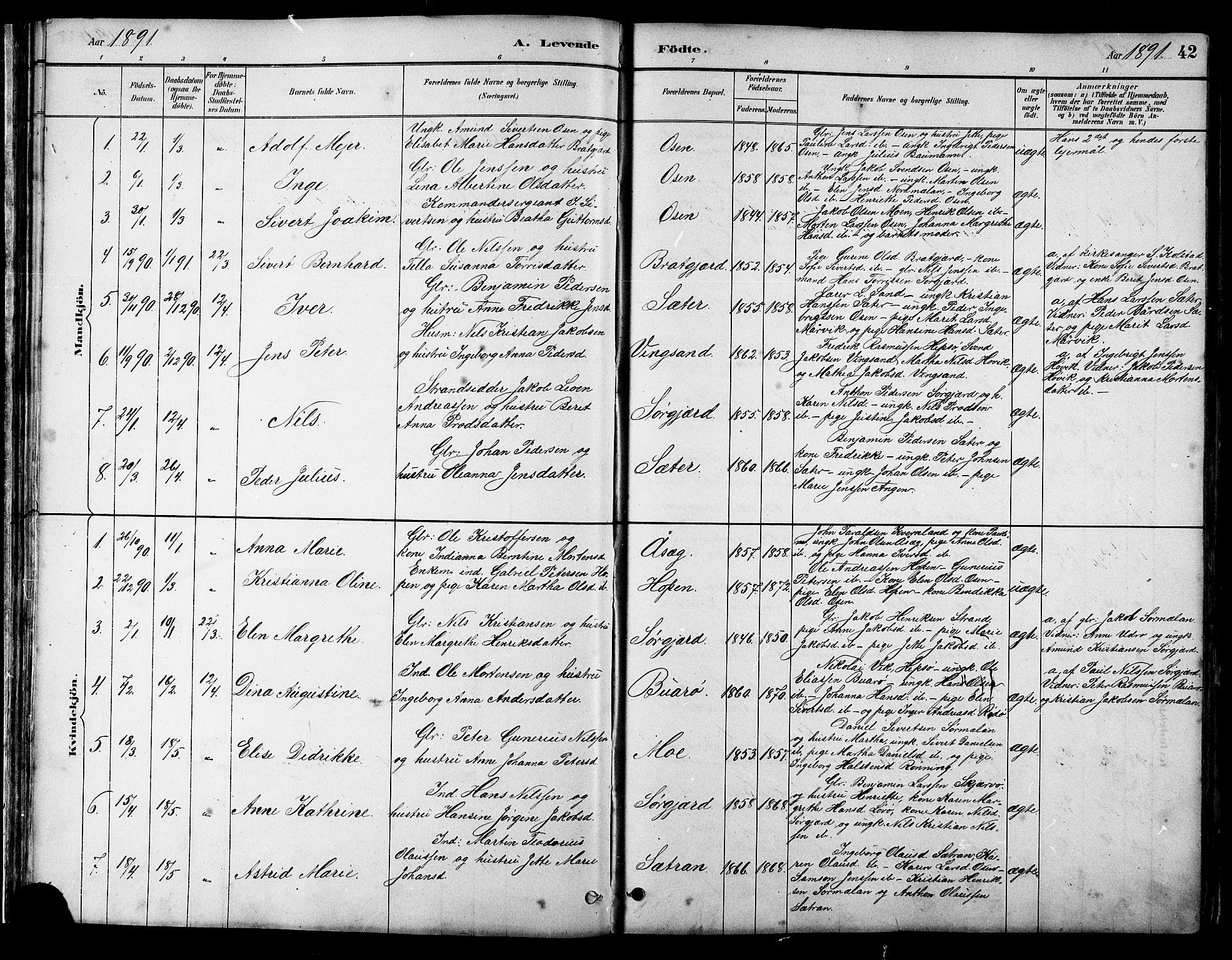 SAT, Ministerialprotokoller, klokkerbøker og fødselsregistre - Sør-Trøndelag, 658/L0726: Klokkerbok nr. 658C02, 1883-1908, s. 42