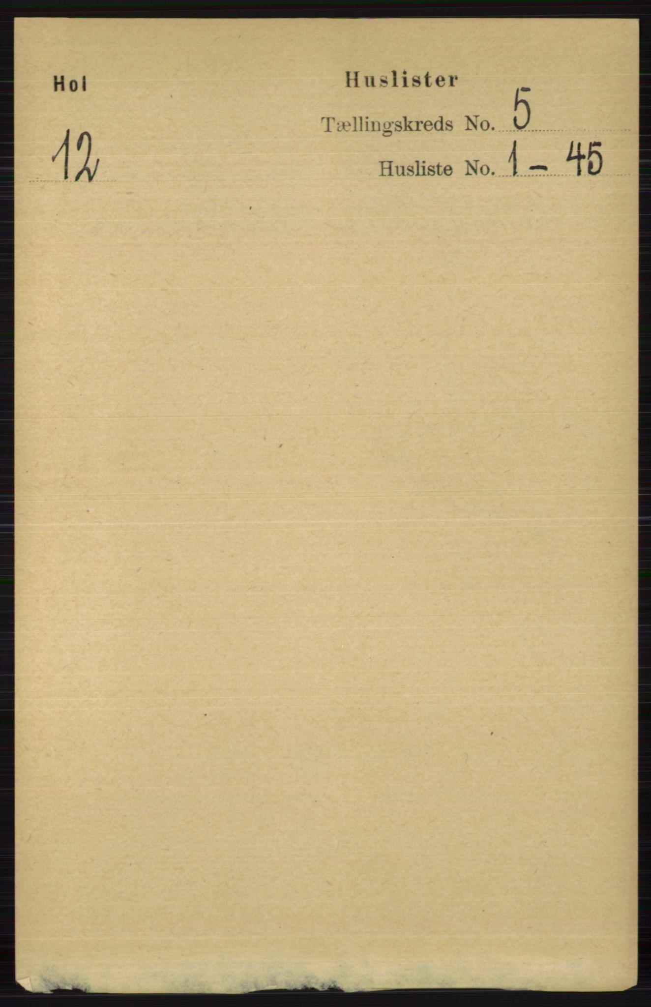 RA, Folketelling 1891 for 0620 Hol herred, 1891, s. 1417