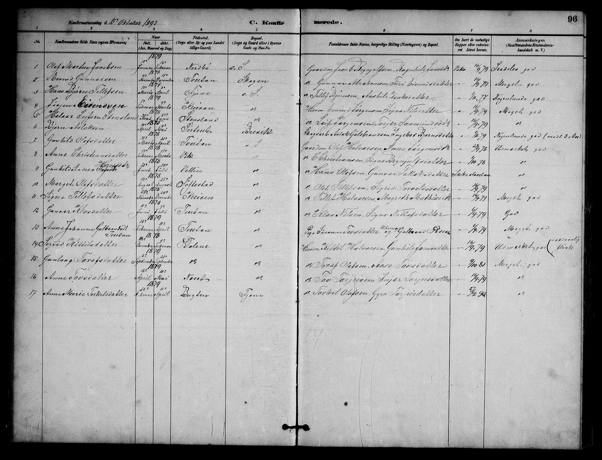 SAKO, Nissedal kirkebøker, G/Ga/L0003: Klokkerbok nr. I 3, 1887-1911, s. 96