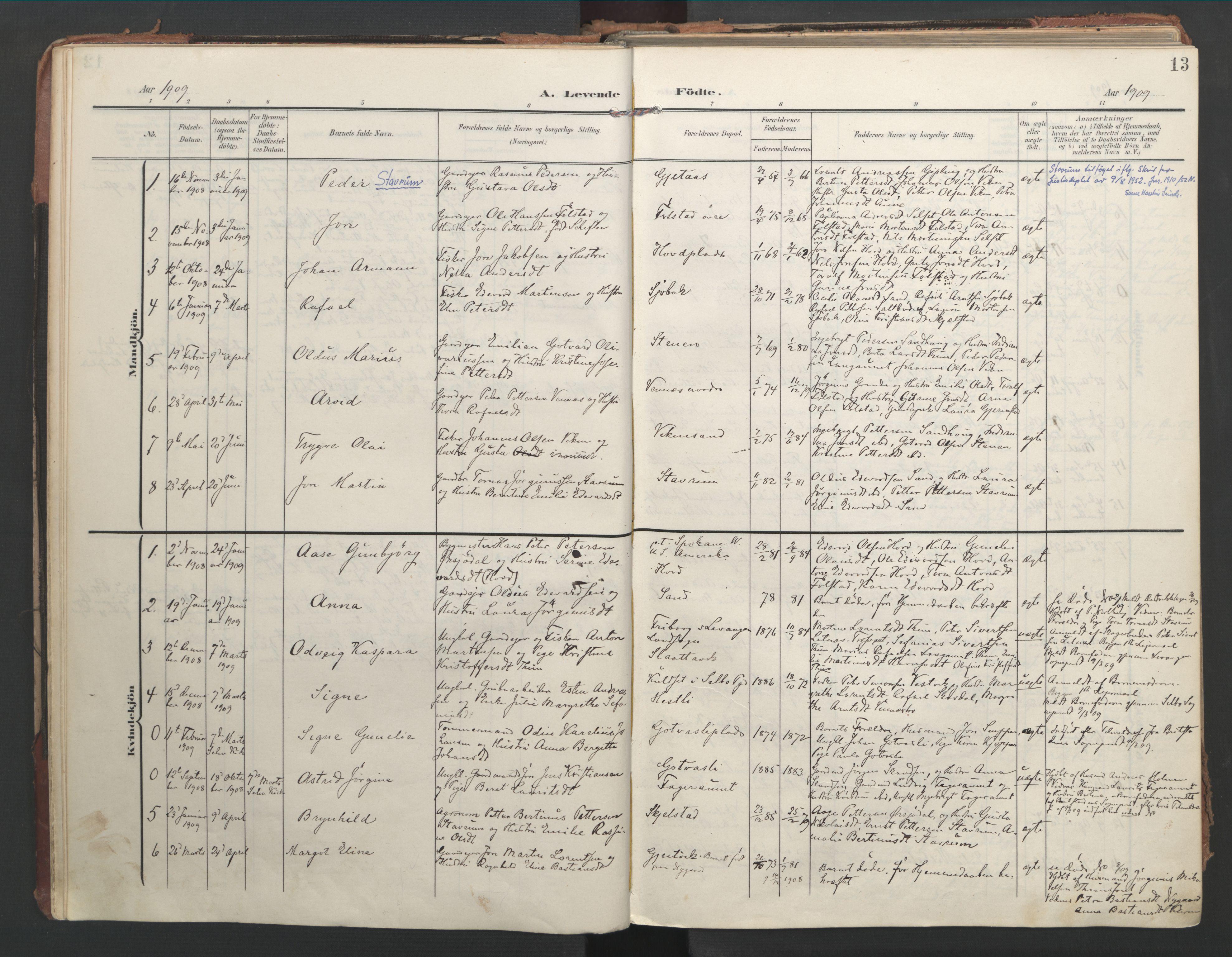 SAT, Ministerialprotokoller, klokkerbøker og fødselsregistre - Nord-Trøndelag, 744/L0421: Ministerialbok nr. 744A05, 1905-1930, s. 13