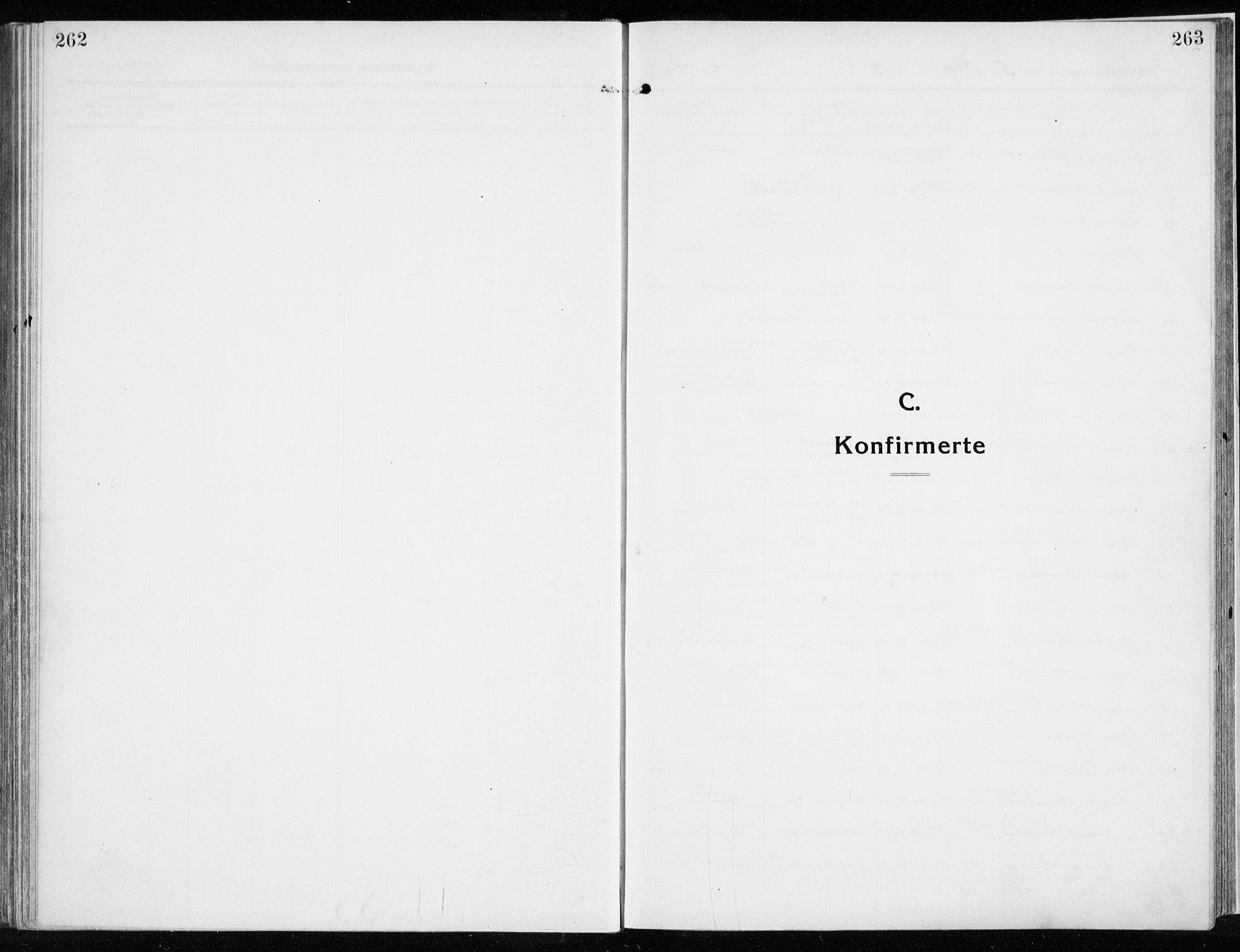 SAH, Ringsaker prestekontor, K/Ka/L0020: Ministerialbok nr. 20, 1913-1922, s. 262-263