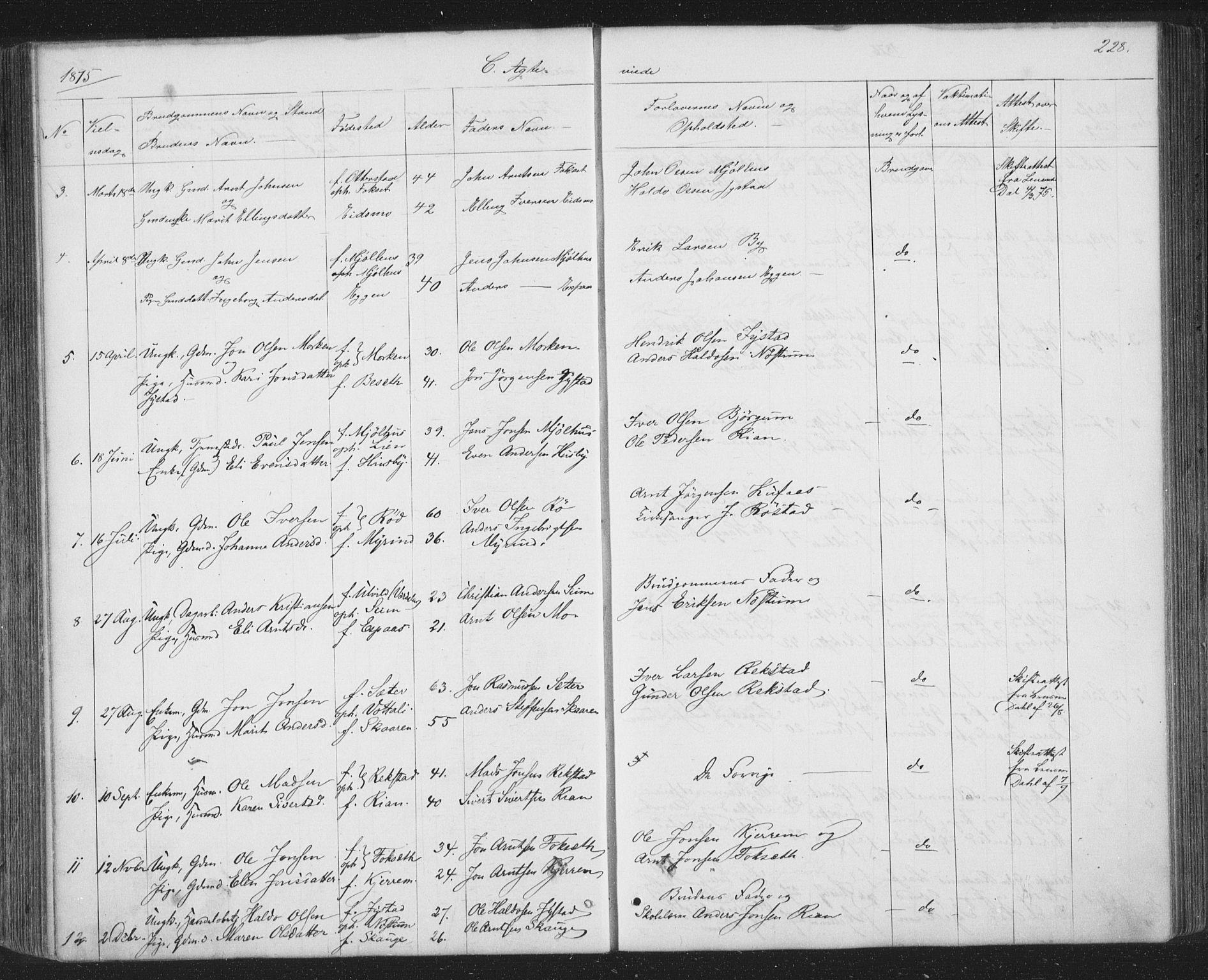 SAT, Ministerialprotokoller, klokkerbøker og fødselsregistre - Sør-Trøndelag, 667/L0798: Klokkerbok nr. 667C03, 1867-1929, s. 228