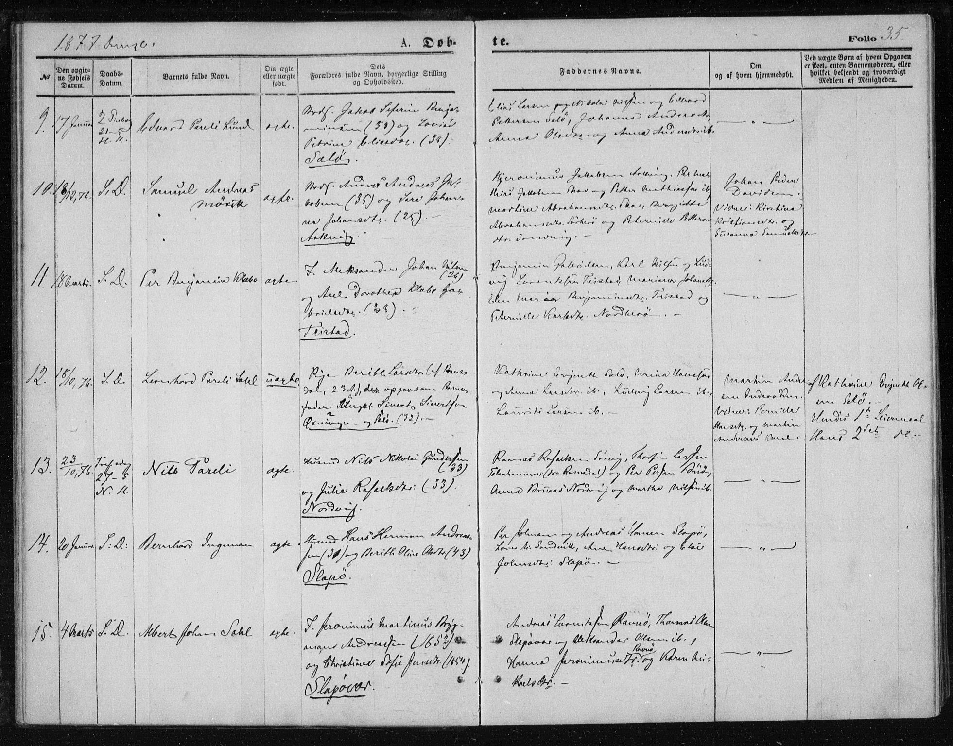 SAT, Ministerialprotokoller, klokkerbøker og fødselsregistre - Nordland, 834/L0506: Ministerialbok nr. 834A04, 1872-1878, s. 35