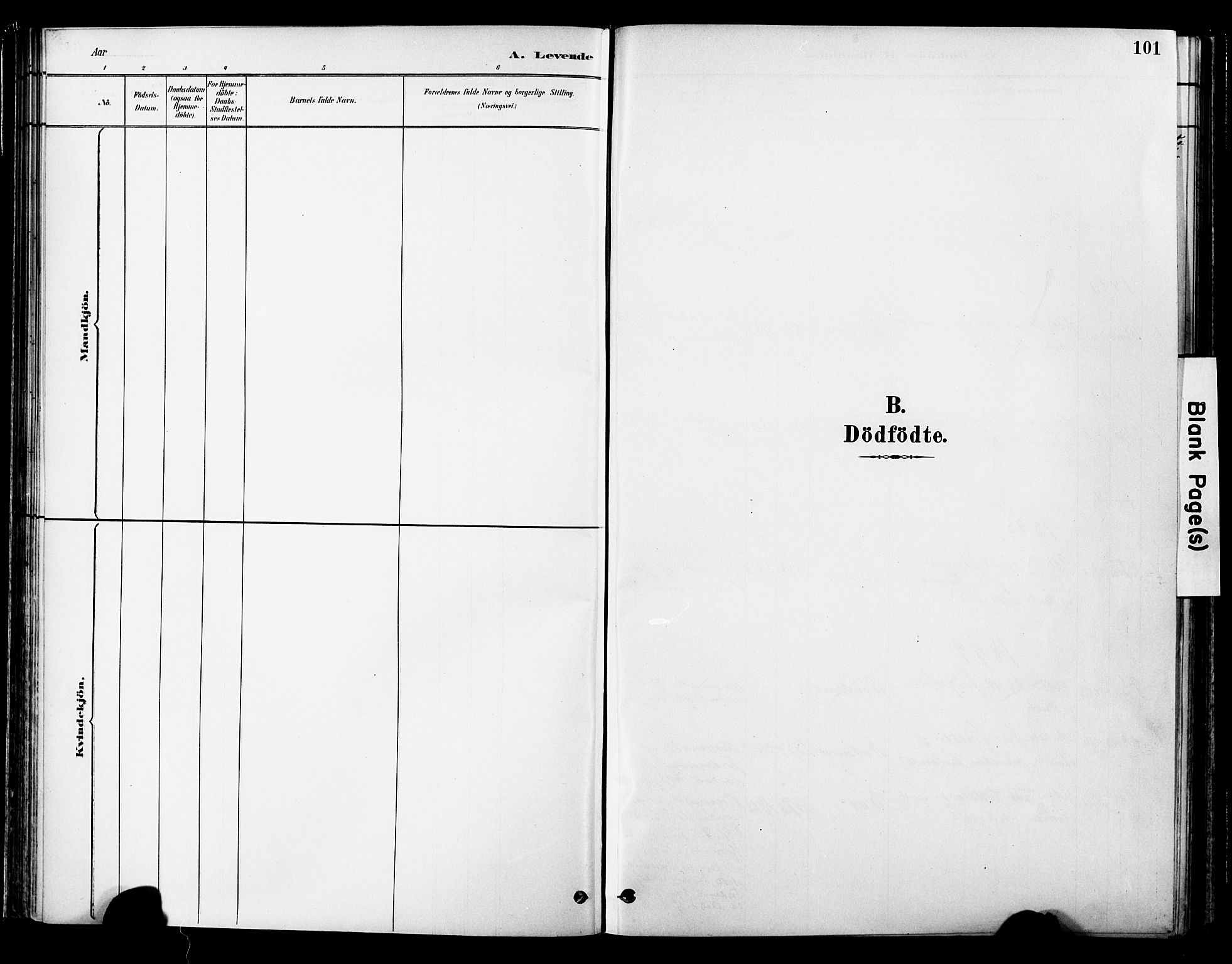 SAT, Ministerialprotokoller, klokkerbøker og fødselsregistre - Nord-Trøndelag, 755/L0494: Ministerialbok nr. 755A03, 1882-1902, s. 101