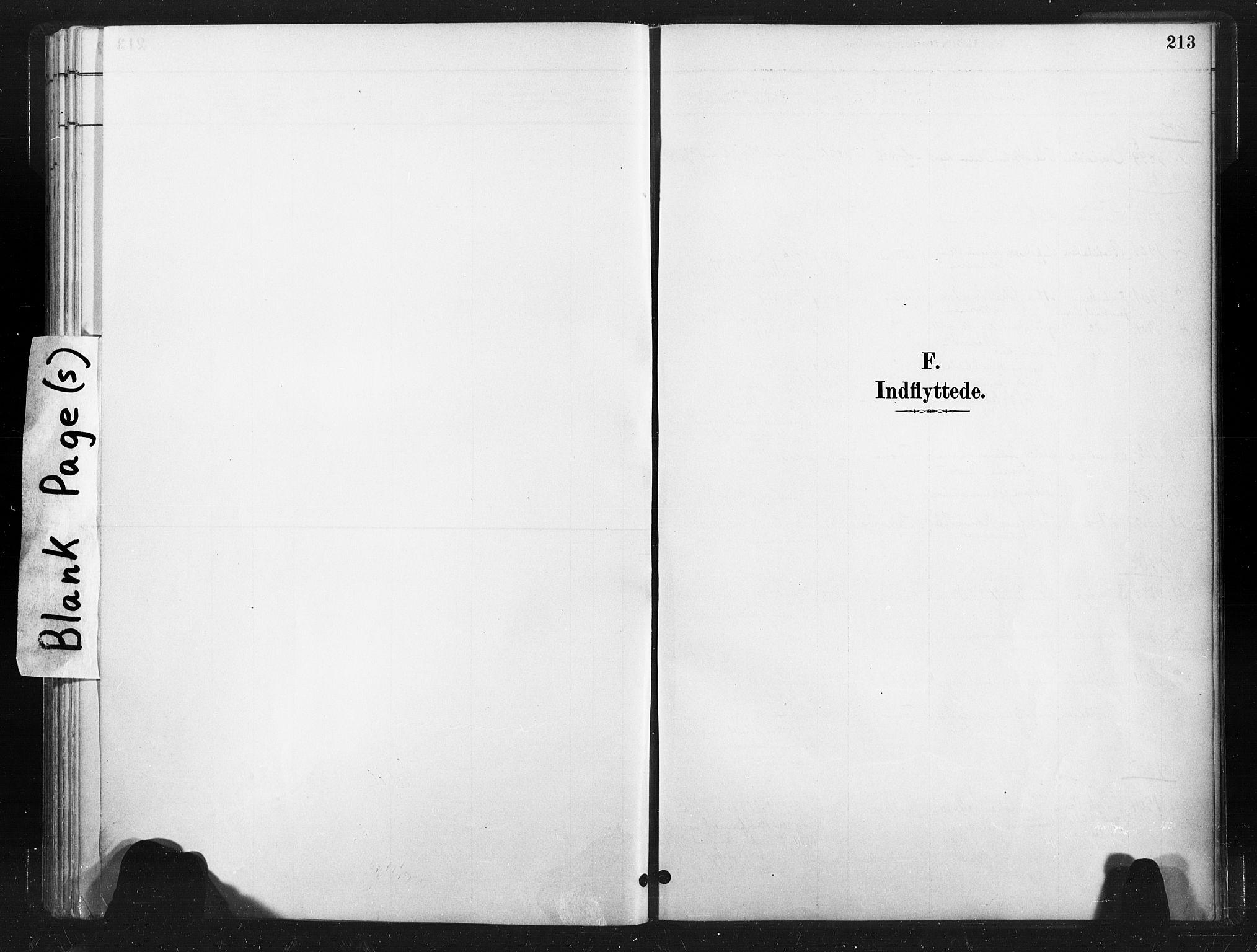 SAT, Ministerialprotokoller, klokkerbøker og fødselsregistre - Nord-Trøndelag, 736/L0361: Ministerialbok nr. 736A01, 1884-1906, s. 213