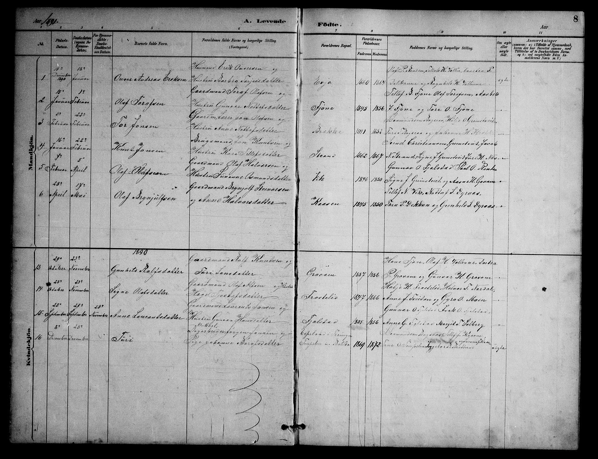 SAKO, Nissedal kirkebøker, G/Ga/L0003: Klokkerbok nr. I 3, 1887-1911, s. 8