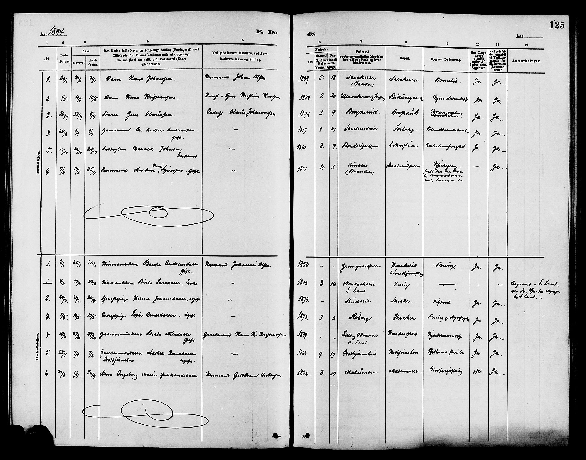 SAH, Nordre Land prestekontor, Ministerialbok nr. 3, 1882-1896, s. 125