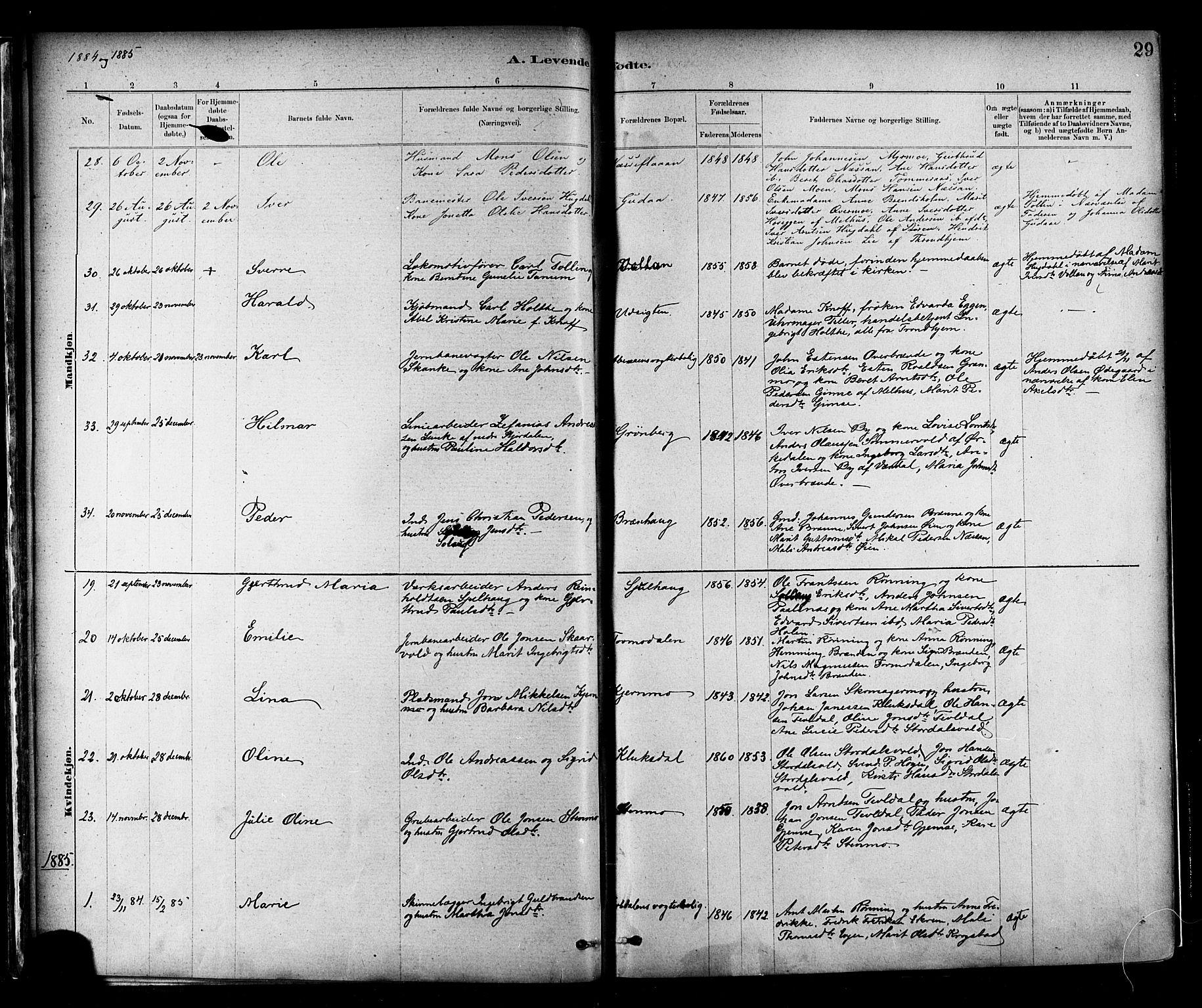 SAT, Ministerialprotokoller, klokkerbøker og fødselsregistre - Nord-Trøndelag, 706/L0047: Ministerialbok nr. 706A03, 1878-1892, s. 29