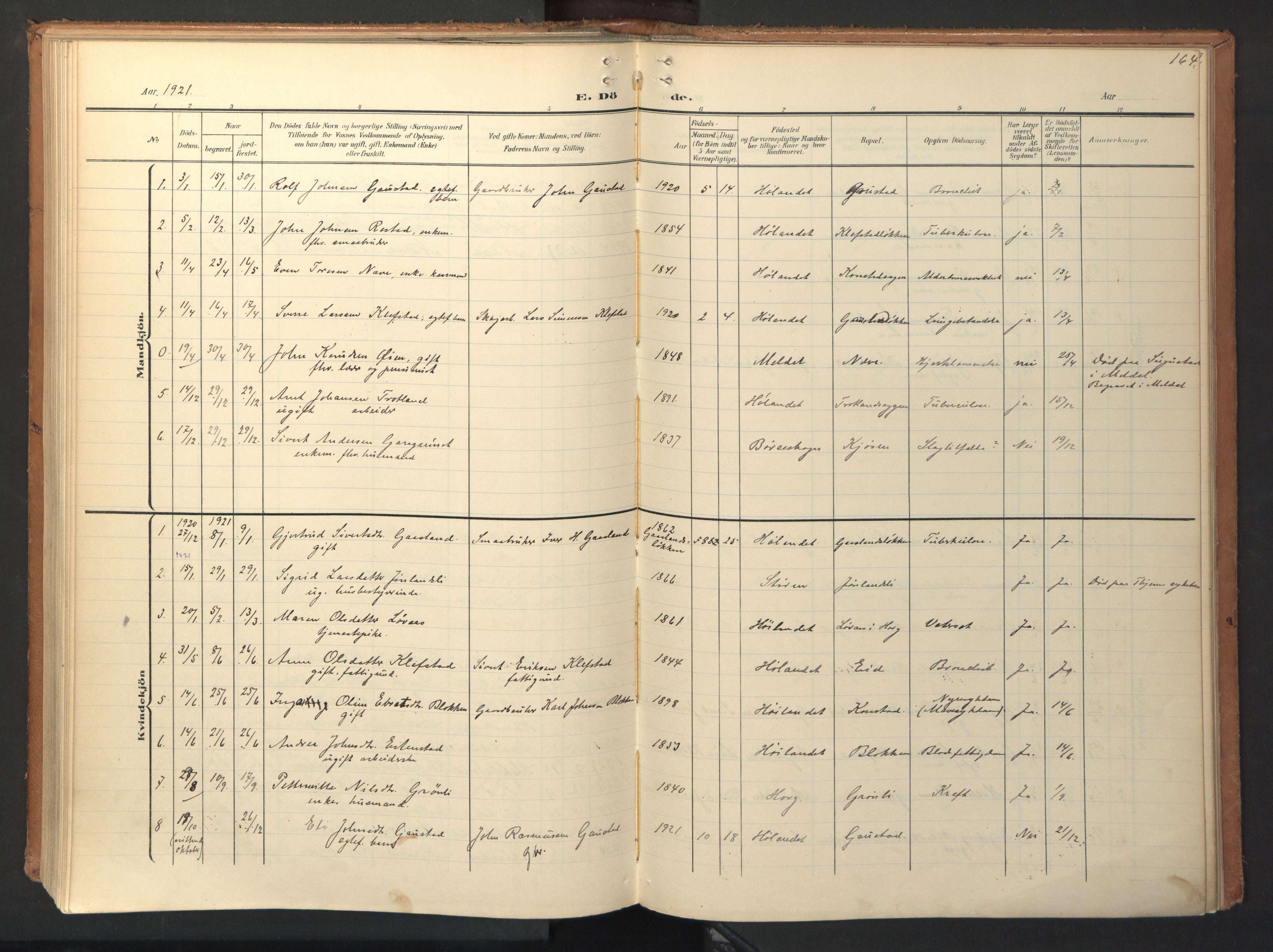 SAT, Ministerialprotokoller, klokkerbøker og fødselsregistre - Sør-Trøndelag, 694/L1128: Ministerialbok nr. 694A02, 1906-1931, s. 164