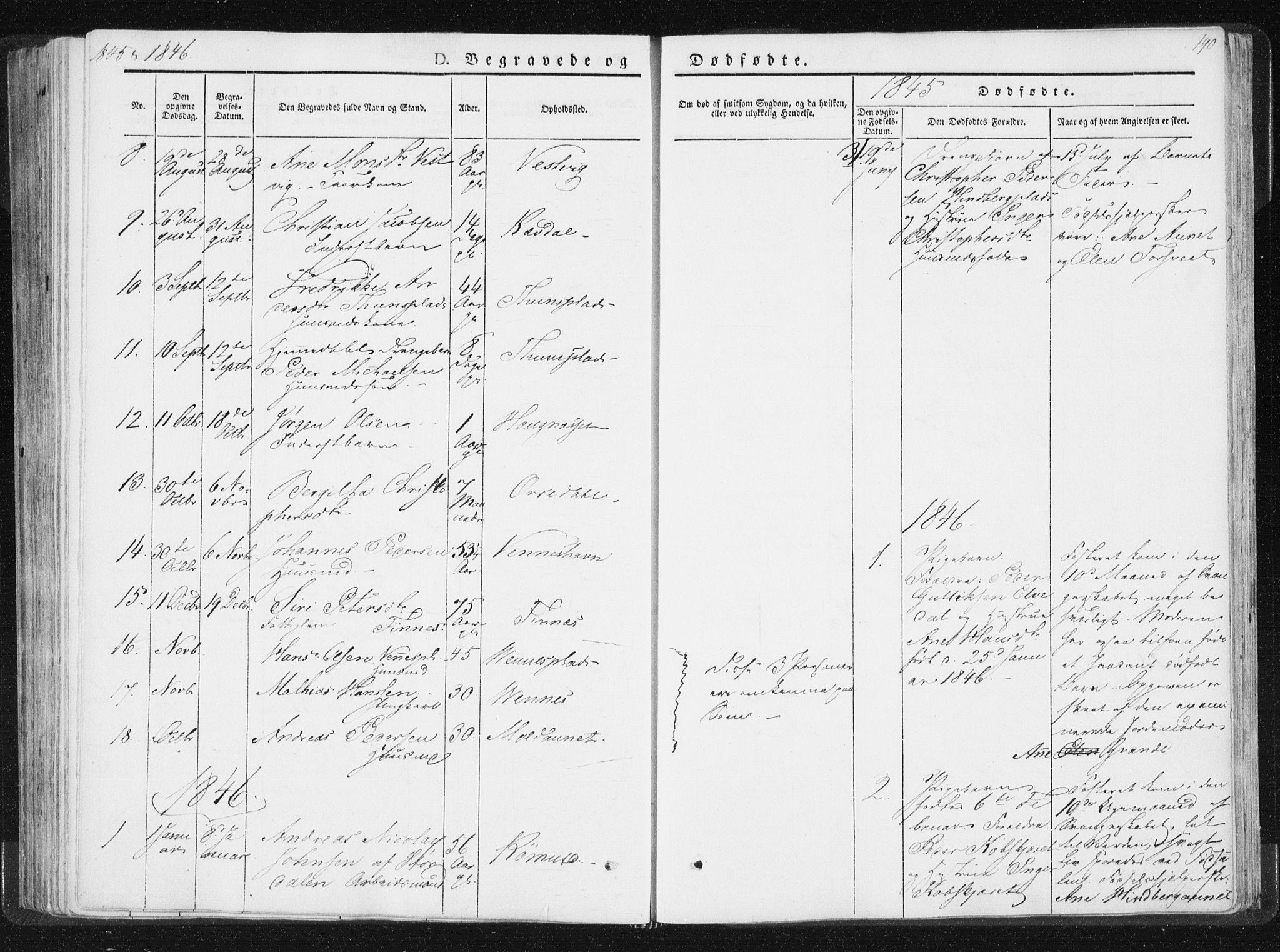 SAT, Ministerialprotokoller, klokkerbøker og fødselsregistre - Nord-Trøndelag, 744/L0418: Ministerialbok nr. 744A02, 1843-1866, s. 190