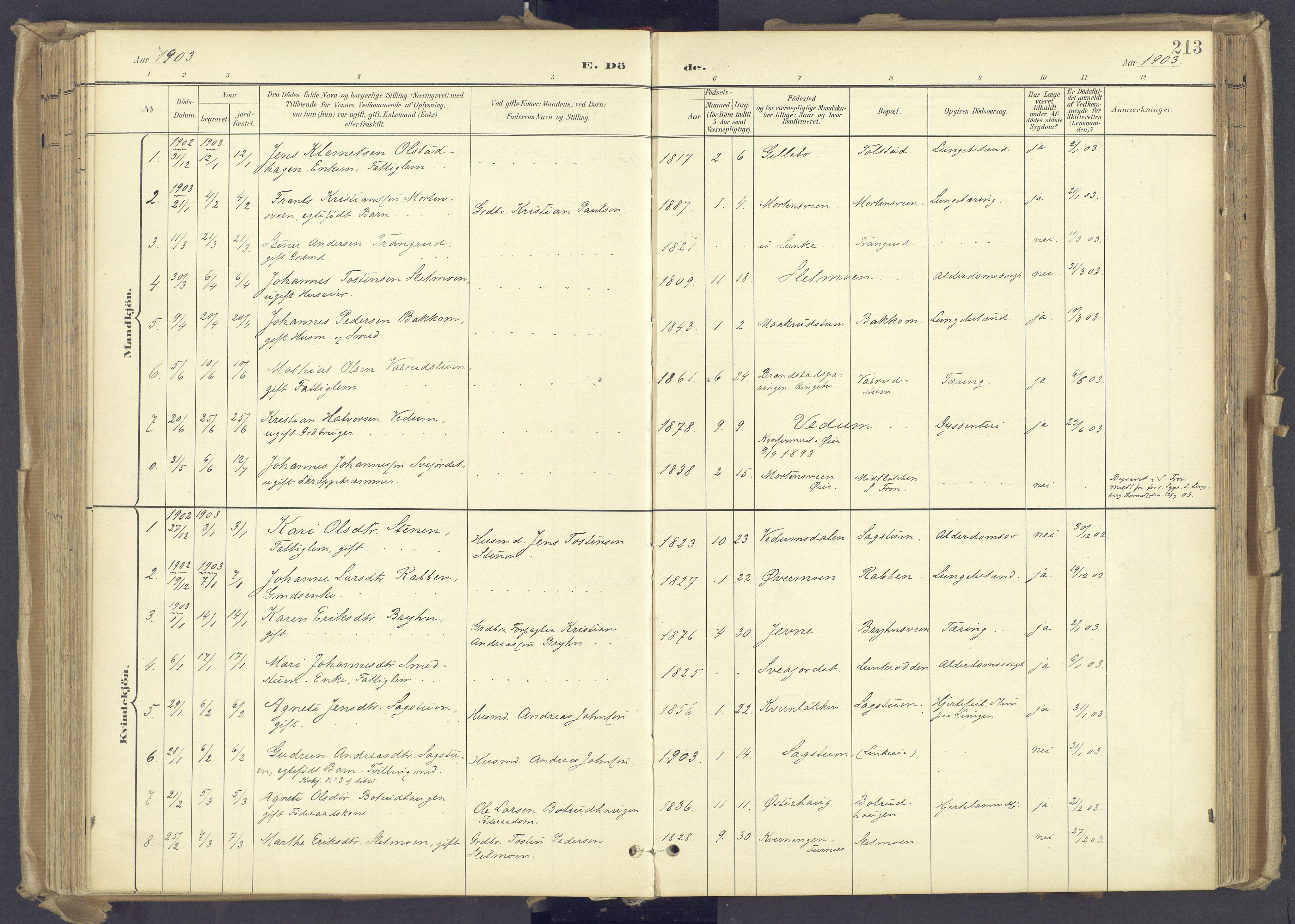 SAH, Øyer prestekontor, Ministerialbok nr. 12, 1897-1920, s. 213