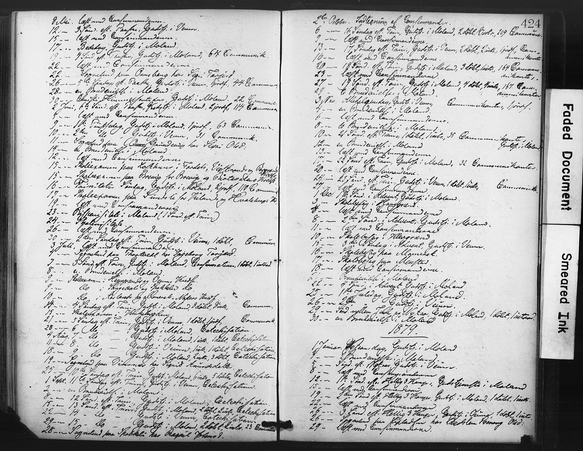 SAKO, Fyresdal kirkebøker, F/Fa/L0006: Ministerialbok nr. I 6, 1872-1886, s. 424
