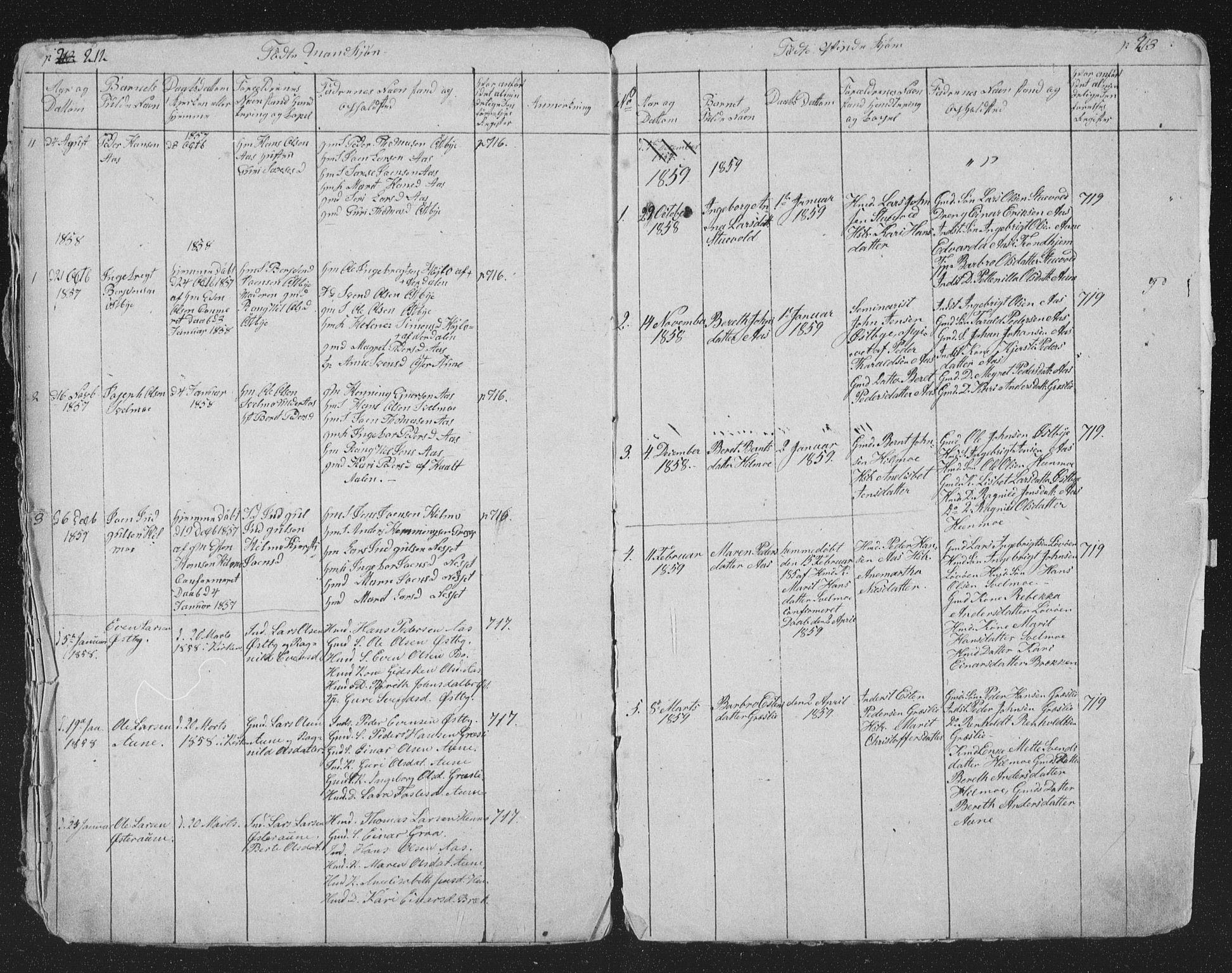 SAT, Ministerialprotokoller, klokkerbøker og fødselsregistre - Sør-Trøndelag, 698/L1165: Klokkerbok nr. 698C02, 1851-1861, s. 212-213