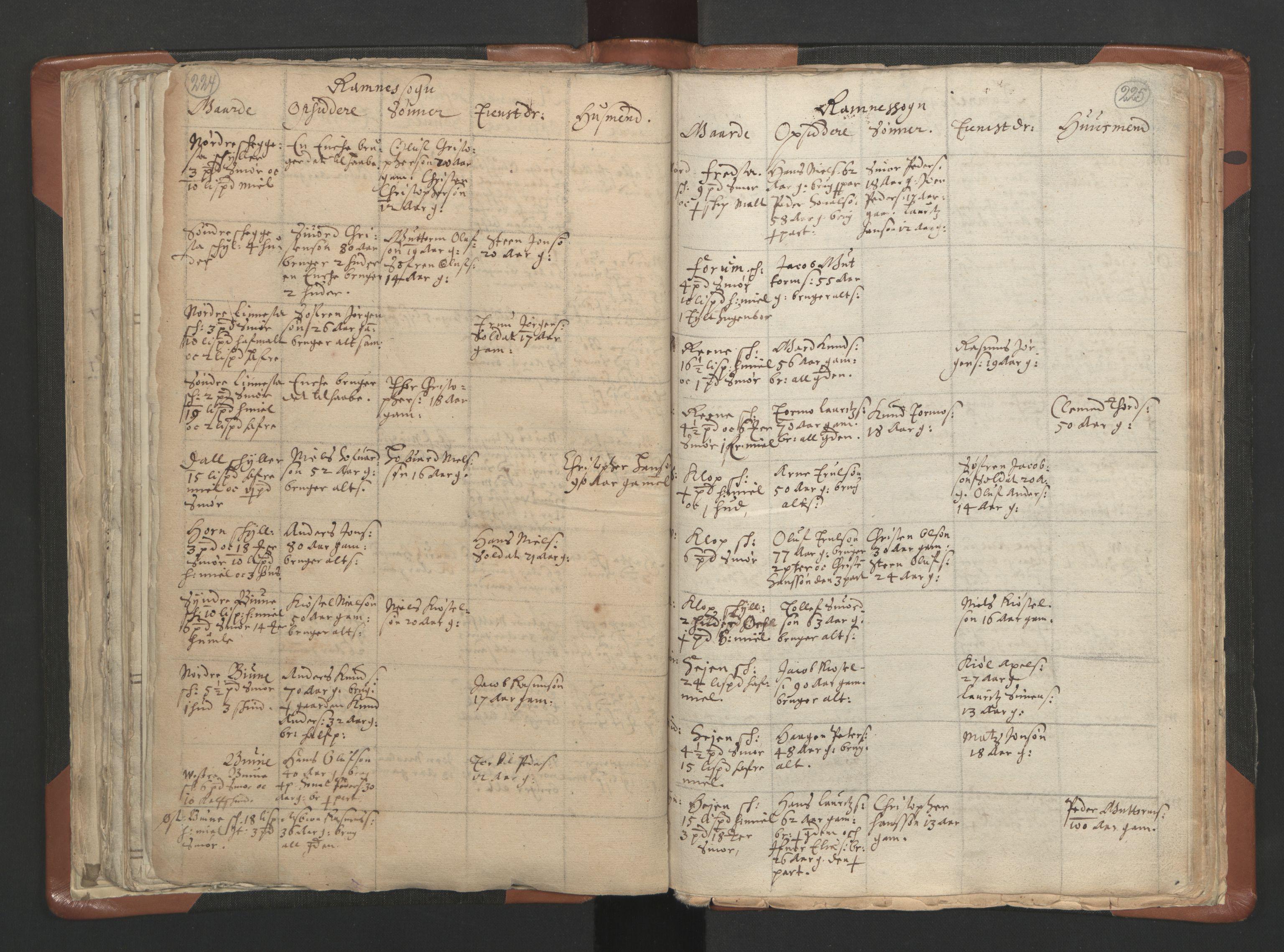 RA, Sogneprestenes manntall 1664-1666, nr. 10: Tønsberg prosti, 1664-1666, s. 224-225