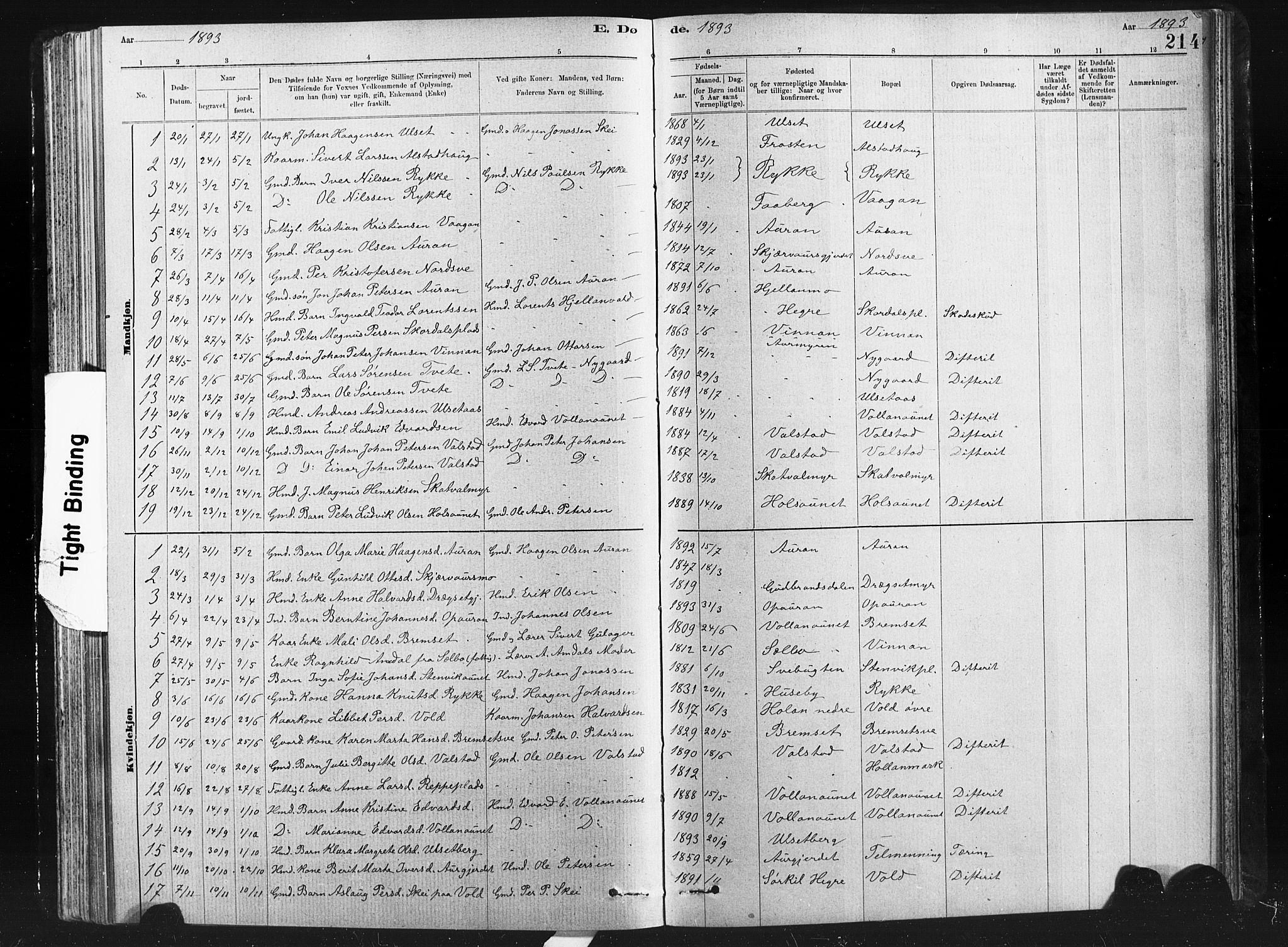 SAT, Ministerialprotokoller, klokkerbøker og fødselsregistre - Nord-Trøndelag, 712/L0103: Klokkerbok nr. 712C01, 1878-1917, s. 214