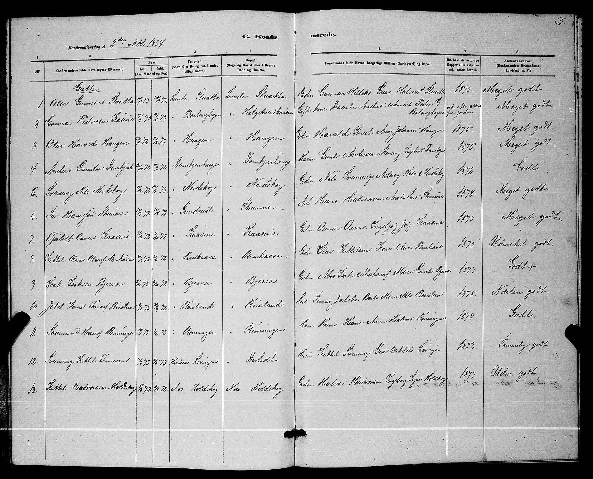 SAKO, Lunde kirkebøker, G/Ga/L0001b: Klokkerbok nr. I 1, 1879-1887, s. 65