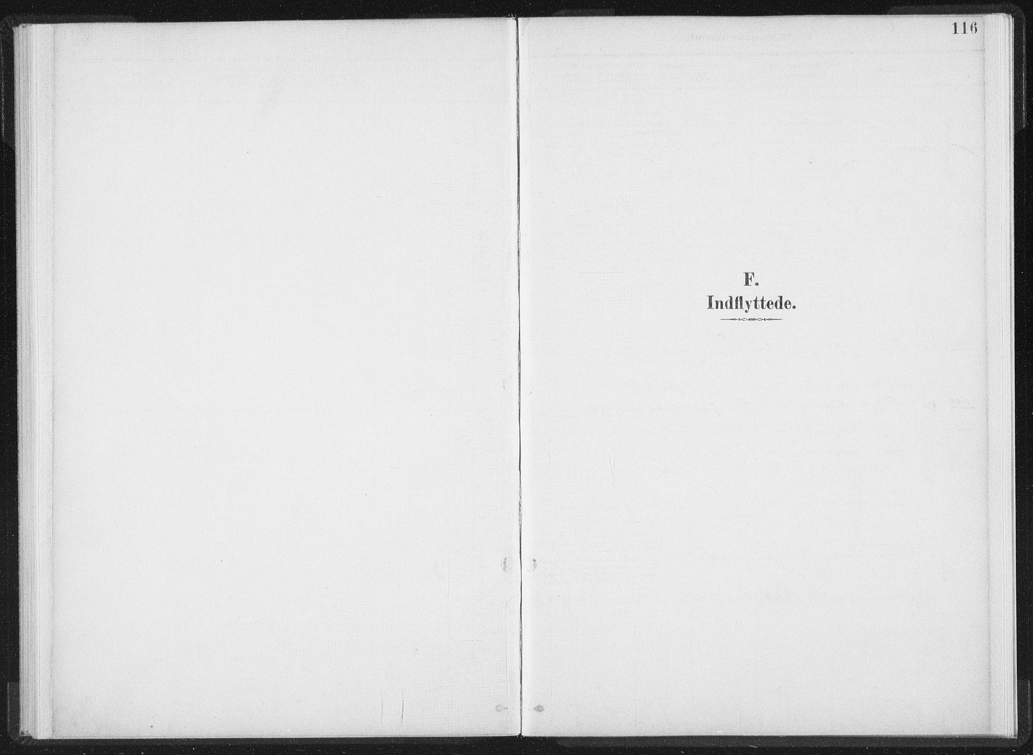 SAT, Ministerialprotokoller, klokkerbøker og fødselsregistre - Nord-Trøndelag, 724/L0263: Ministerialbok nr. 724A01, 1891-1907, s. 116