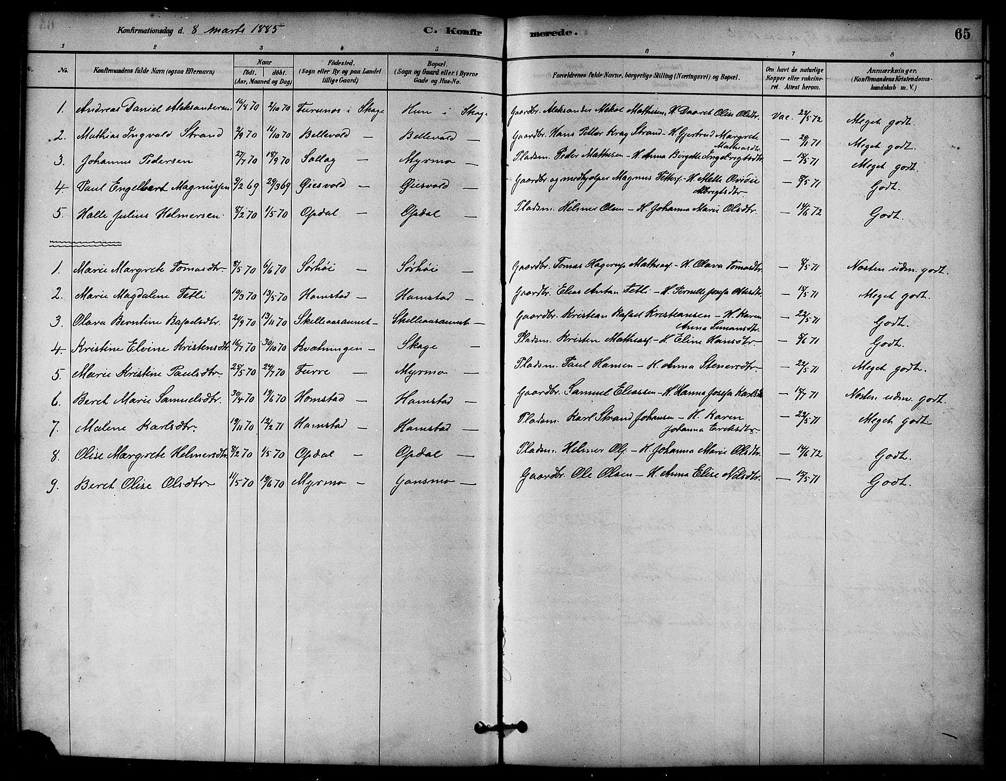 SAT, Ministerialprotokoller, klokkerbøker og fødselsregistre - Nord-Trøndelag, 766/L0563: Ministerialbok nr. 767A01, 1881-1899, s. 65