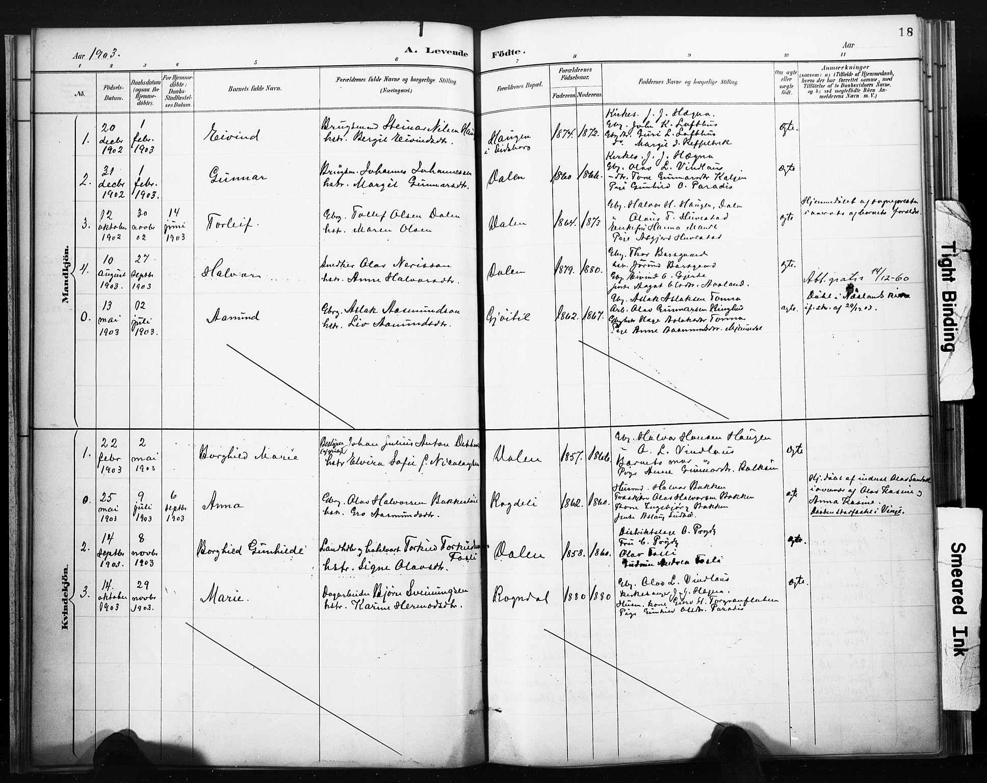 SAKO, Lårdal kirkebøker, F/Fb/L0002: Ministerialbok nr. II 2, 1887-1918, s. 18