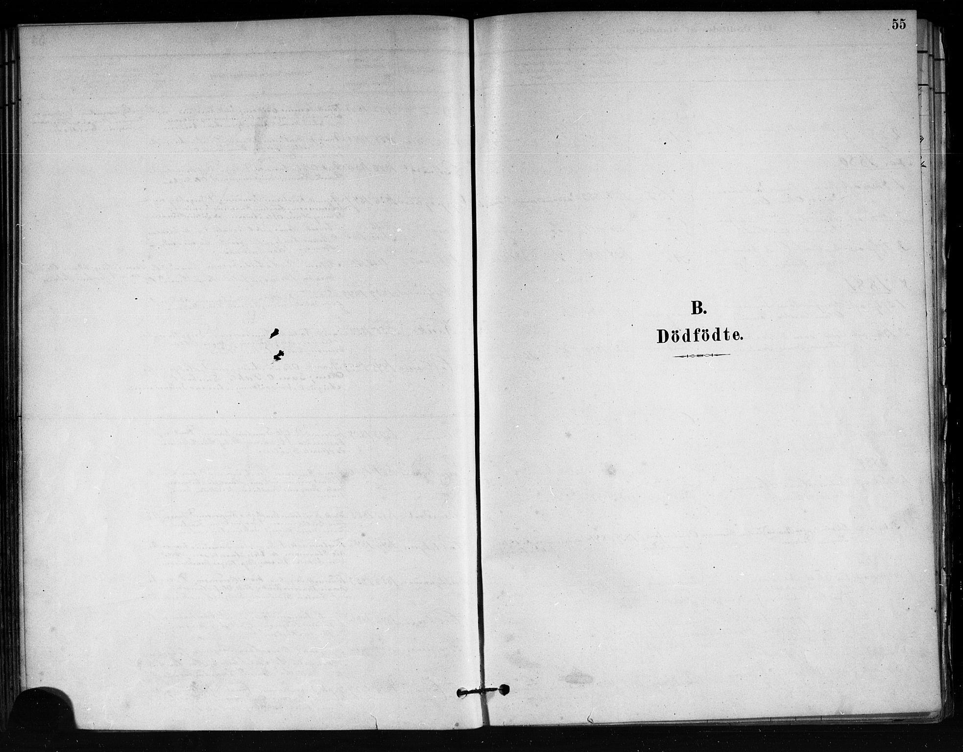 SAKO, Tjøme kirkebøker, F/Fa/L0001: Ministerialbok nr. 1, 1879-1890, s. 55